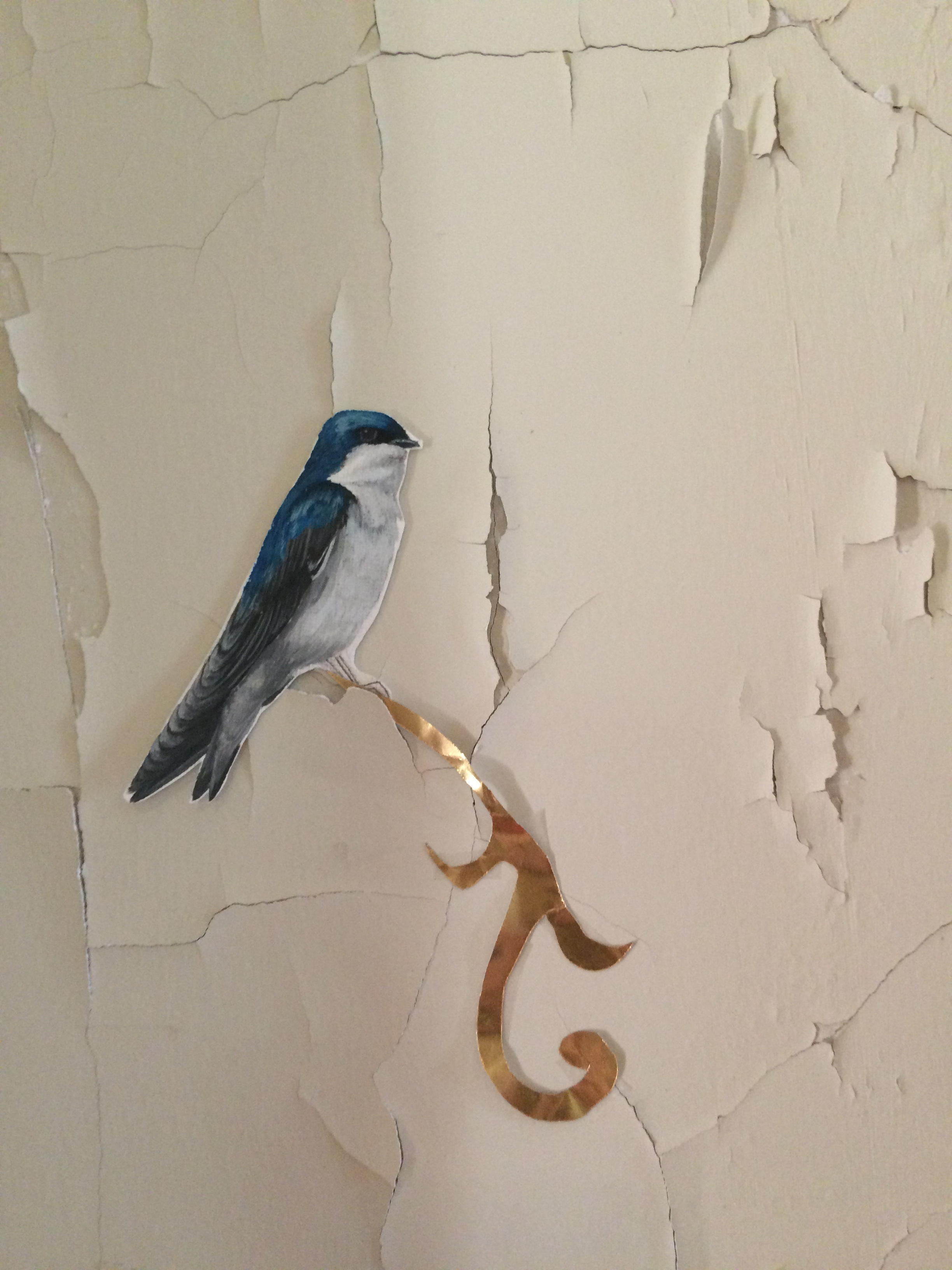 Audobon close up bird.JPG