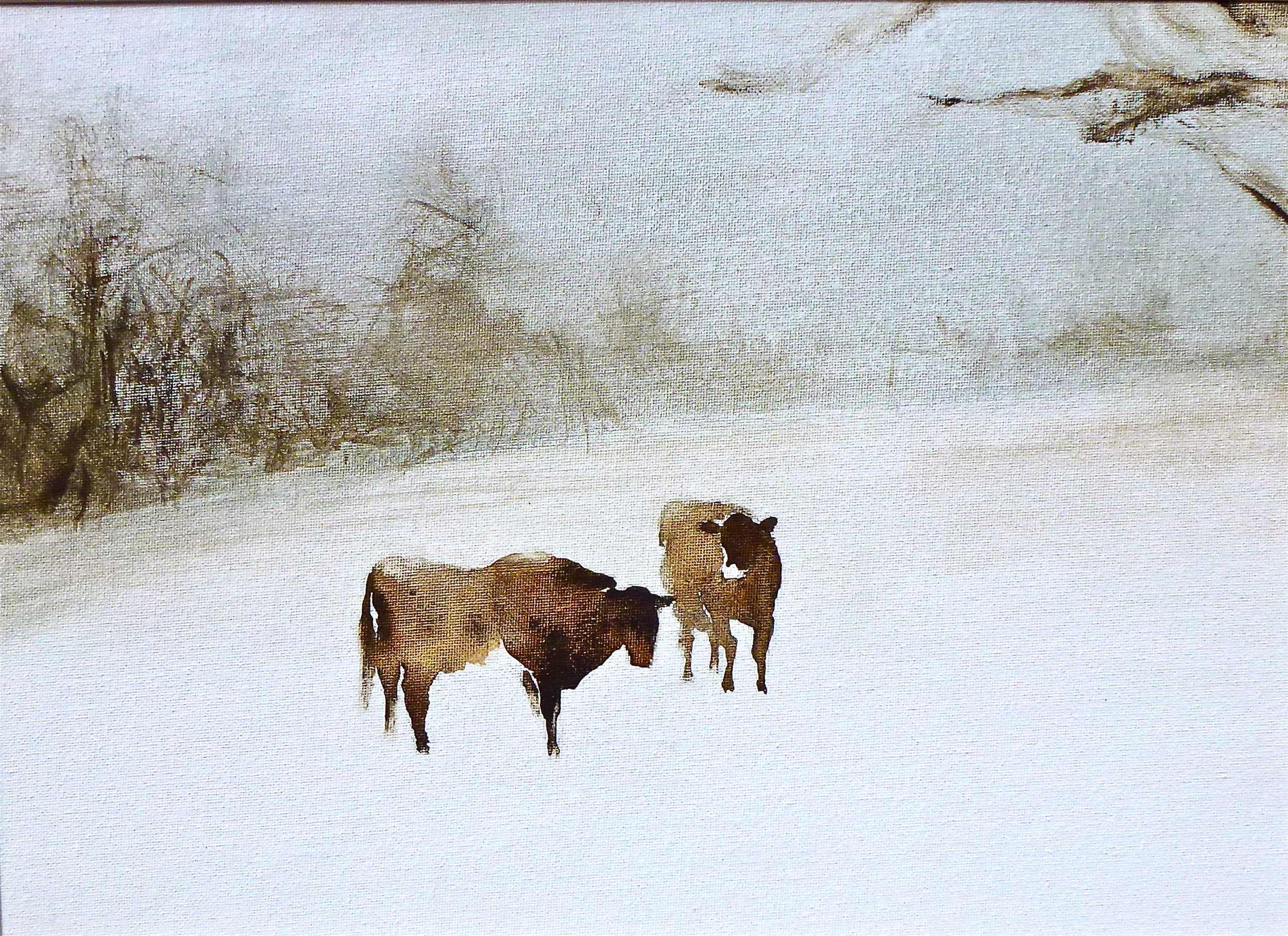 cows in winter, 9x13""