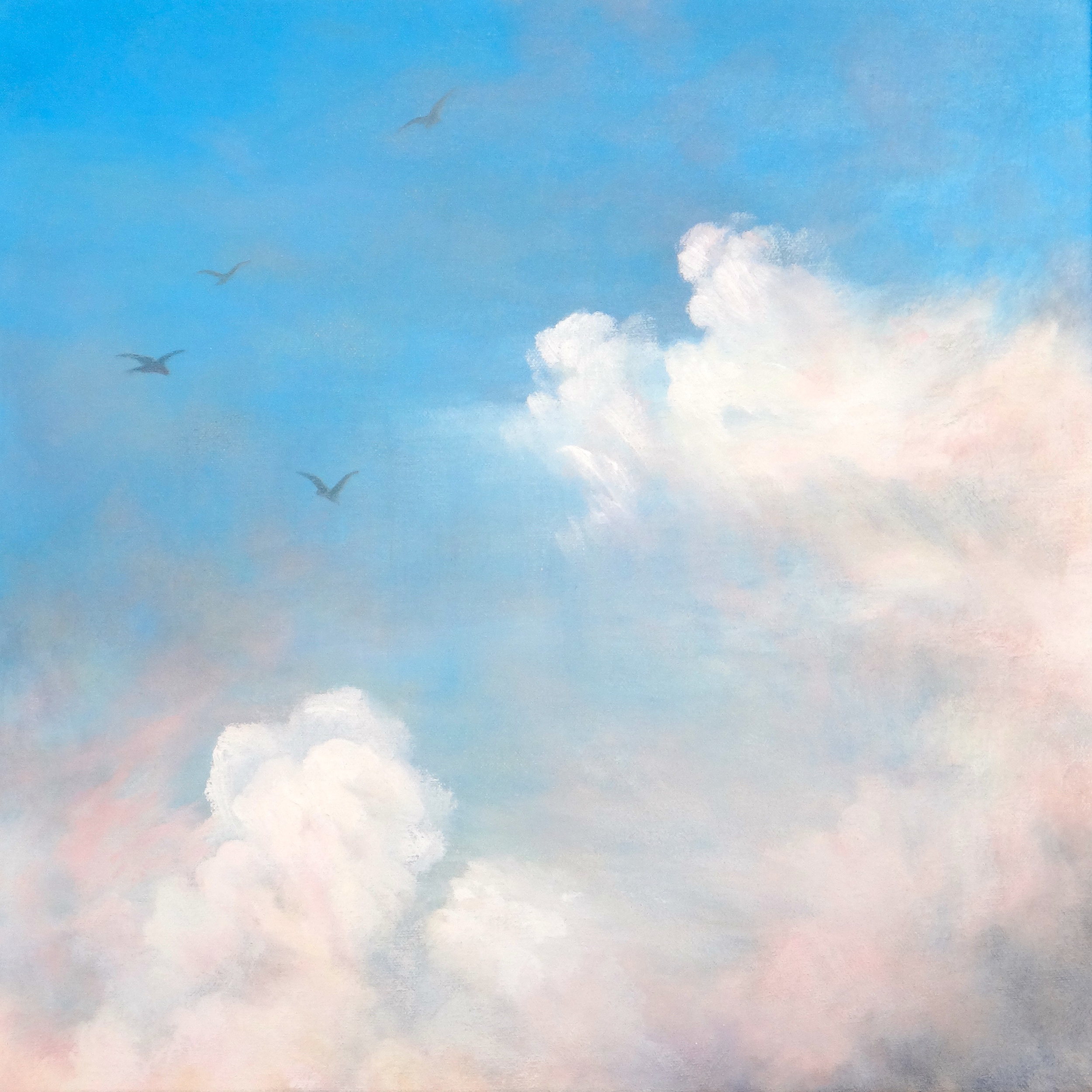 Soaring, Oil on Canvas, 35 x 35cm, Sold
