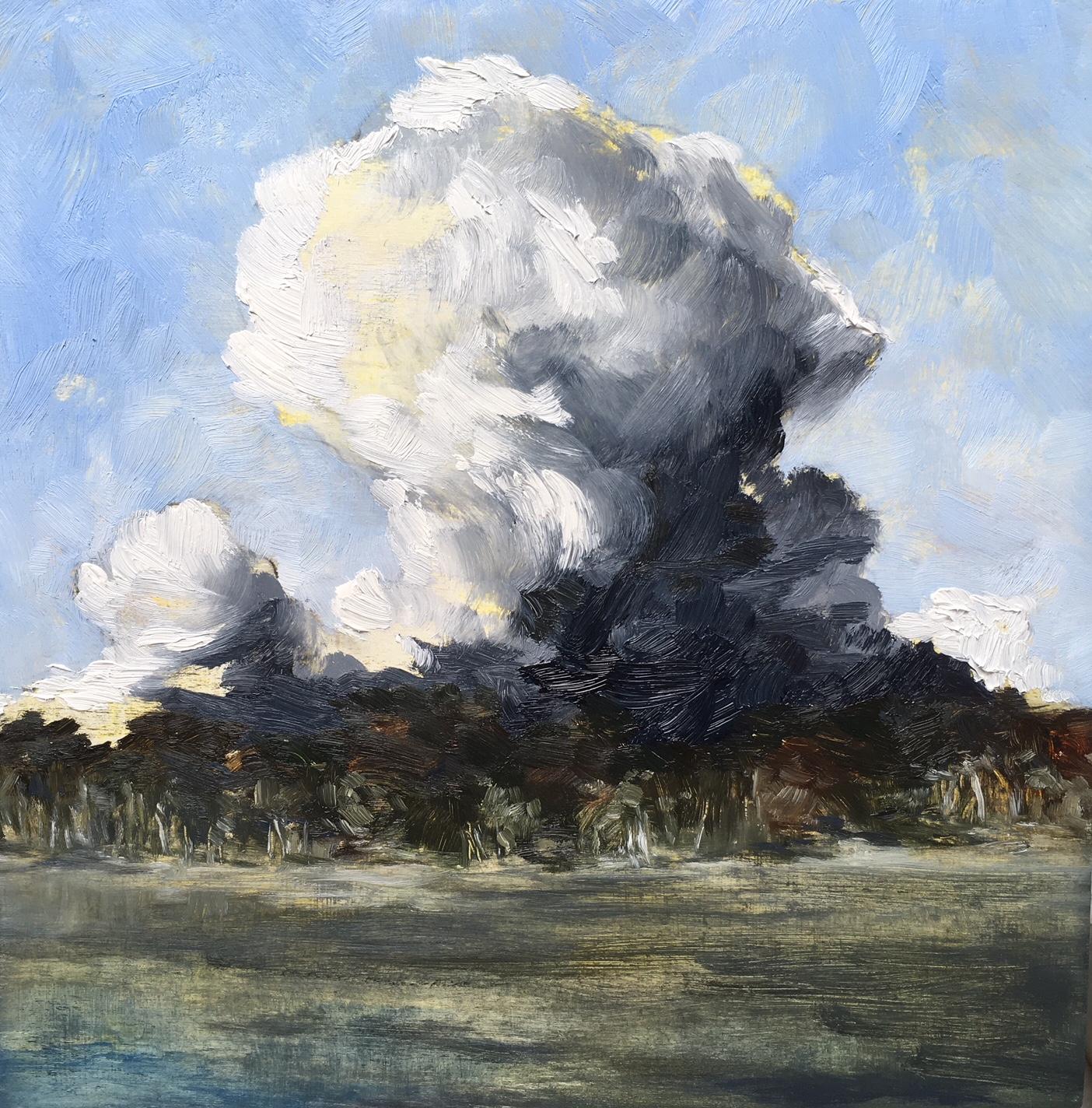 Updraft, Oil on canvas, 30 x 30cm, $880