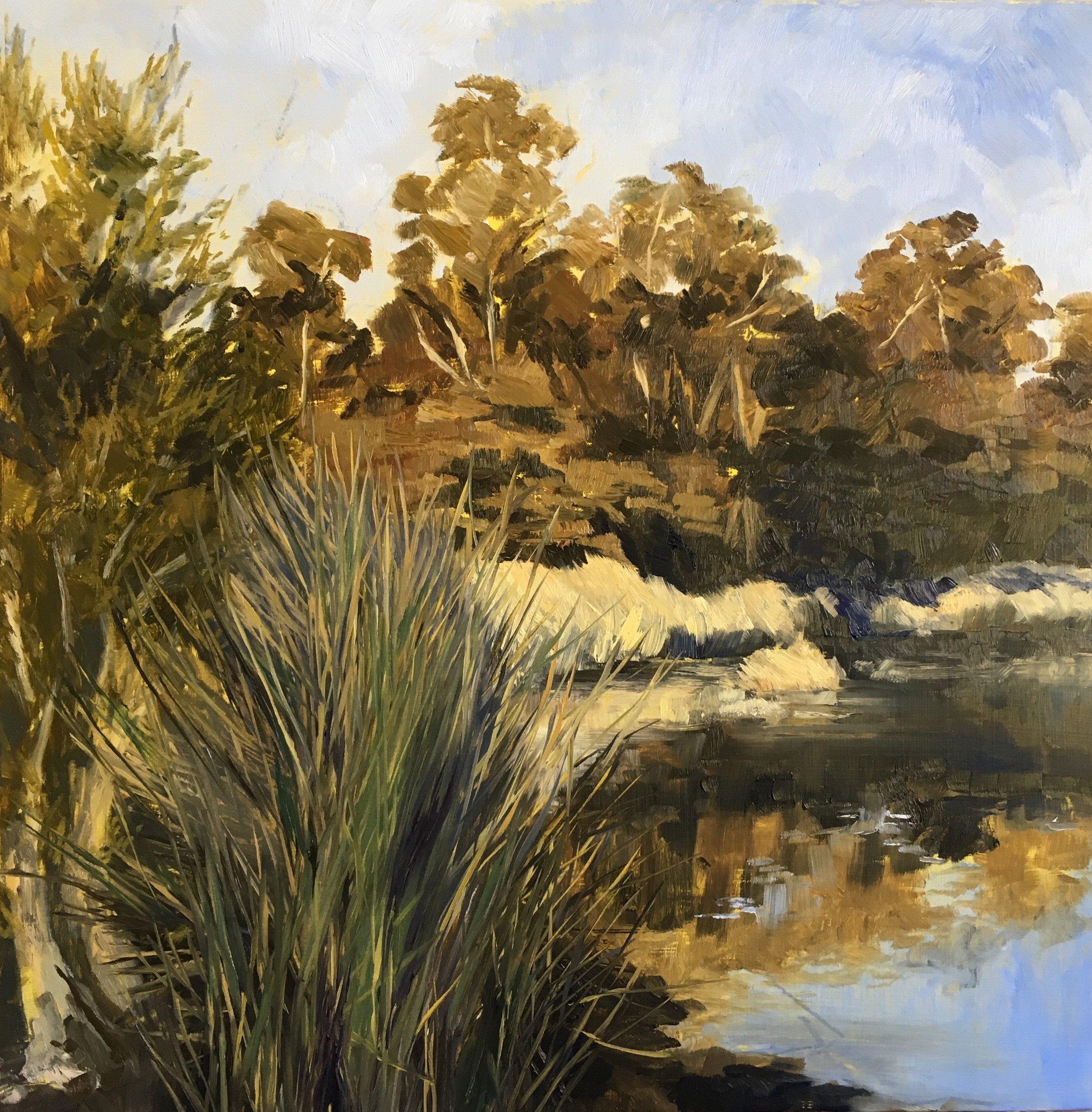 Morning Stillness, Oil on board, 40 x 40cm, $1100