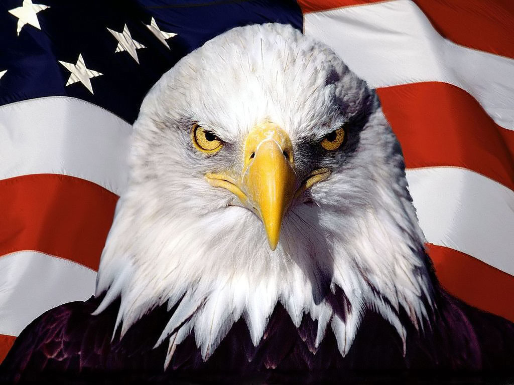 8 reasons to love America USA