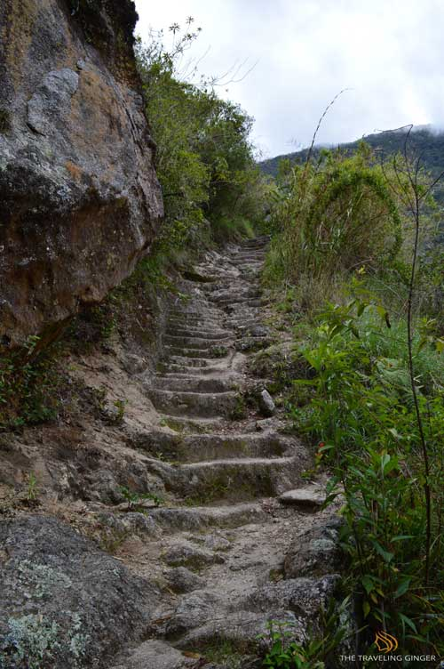 SHORT INCA TRAIL PERU WITH TRAVELING AND HEALING AND CONTIKI