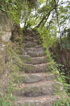 Inca Trail Steps Peru