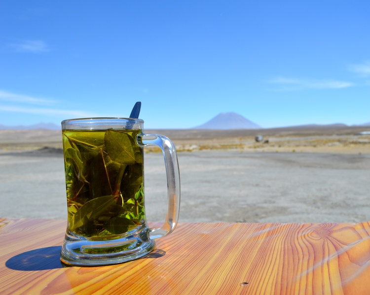 What to drink in Peru: coca tea