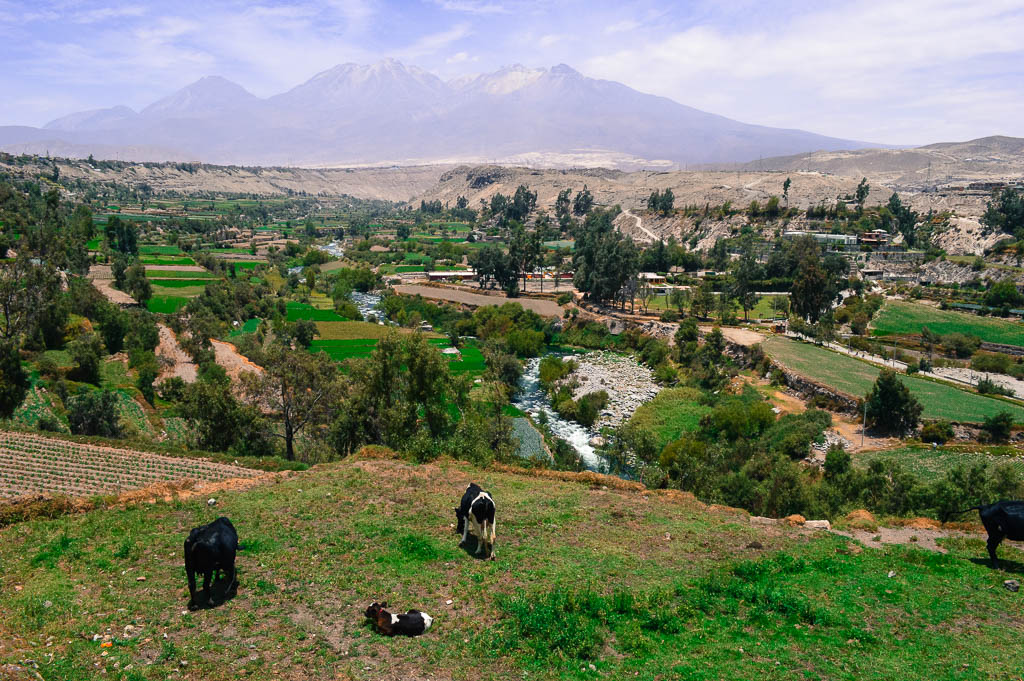 things you really should see arequipa peru