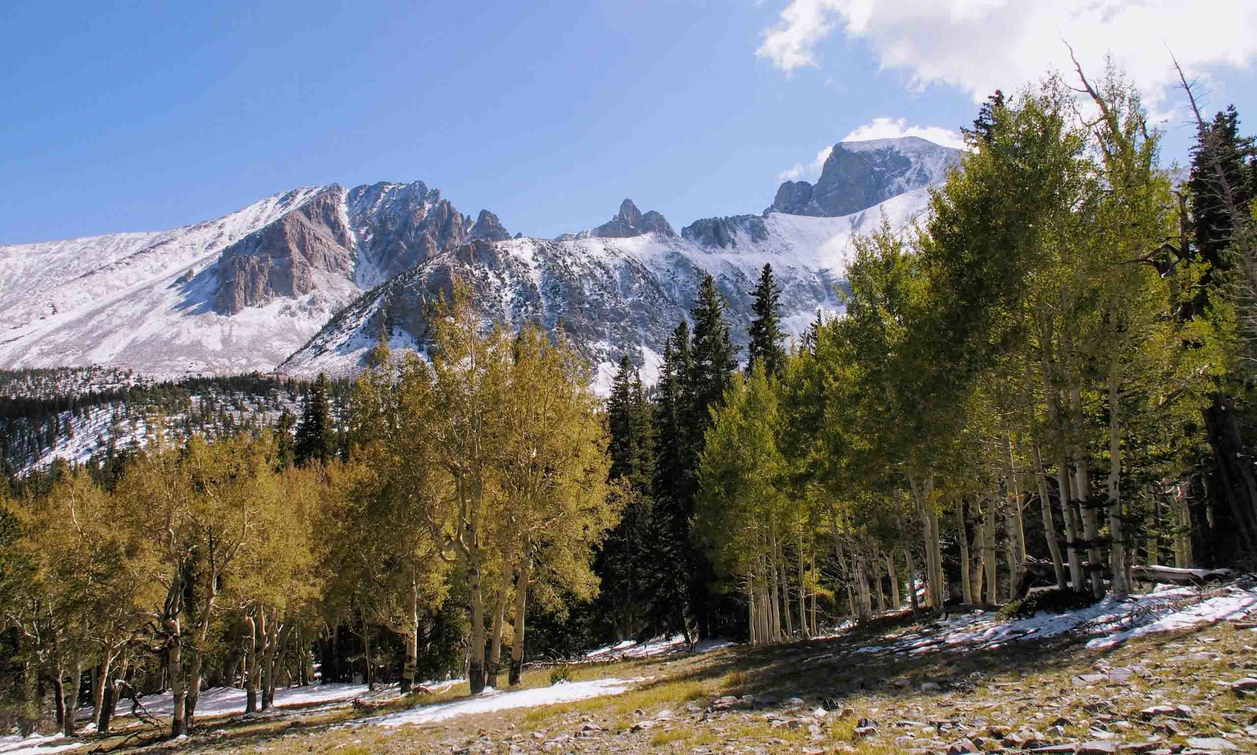 things to do in nevada: great basin national park