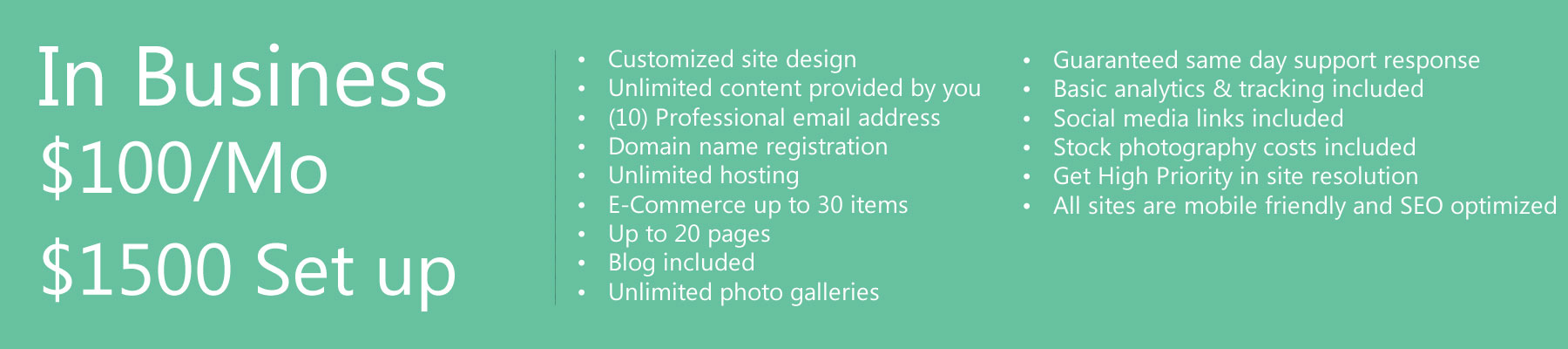 Website Design Business Package
