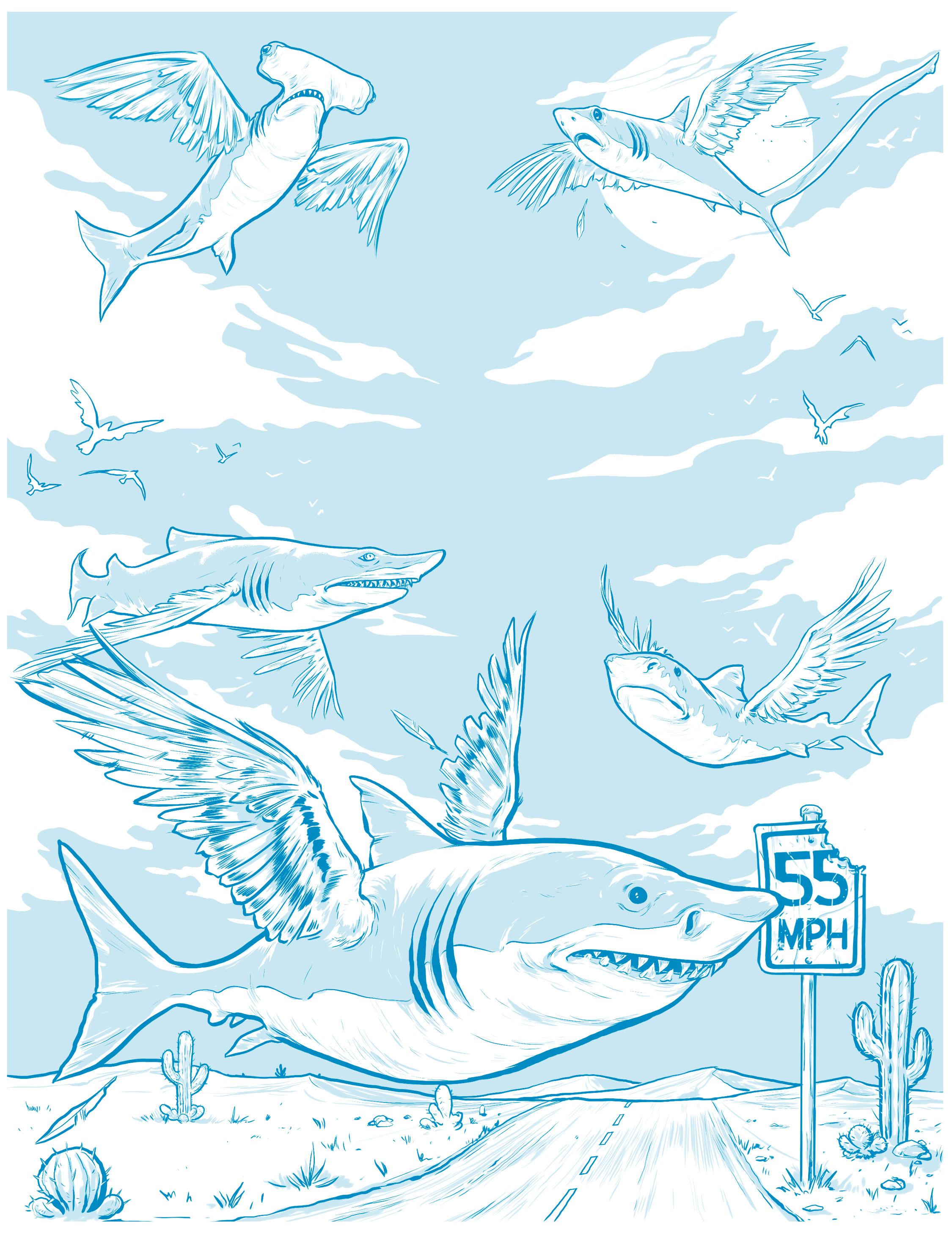 SharkBirds_Final_02.jpg