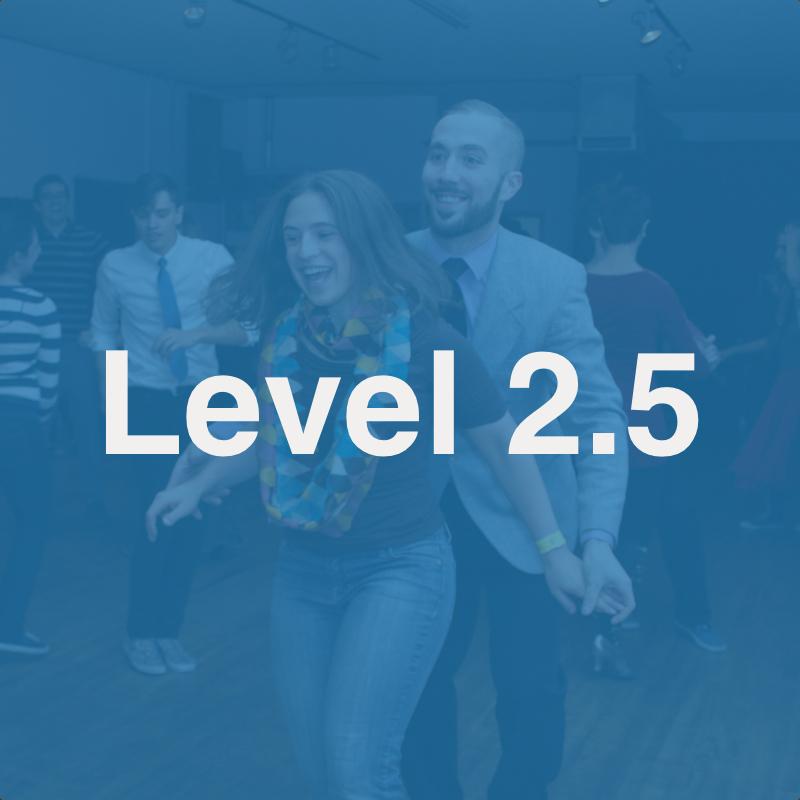 Level 2.5 Class series image.jpg
