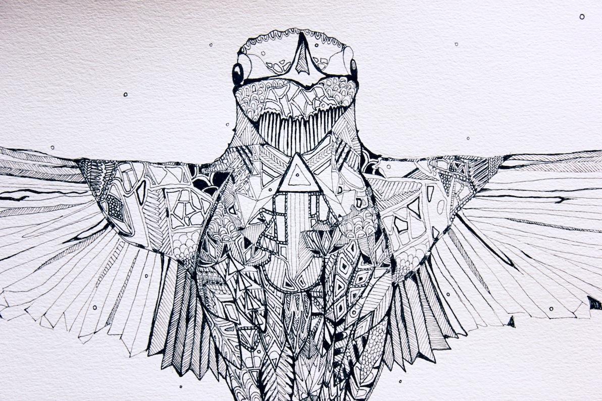 hummingbird_detail.jpg
