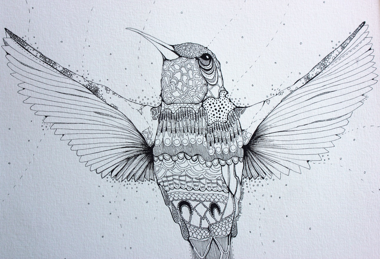 hummingbird4.jpg