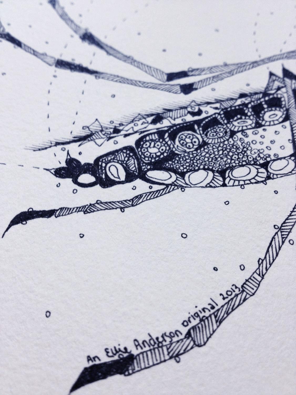 mosquito_detail.jpg