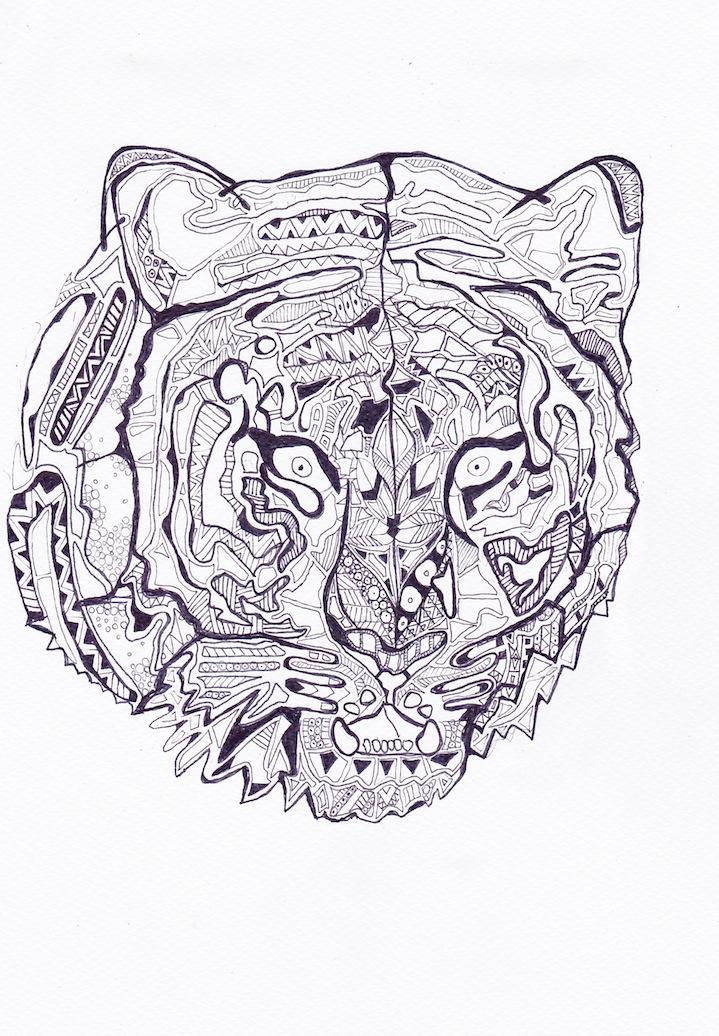 tigerhead1.jpg