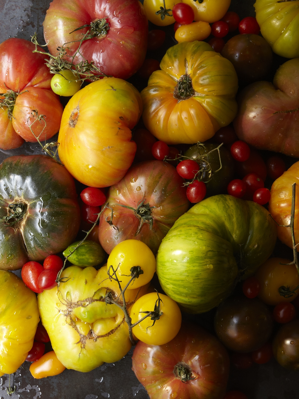 Heirloom tomatoes at Via Carota, where cherished downtown chefs Jody Williams and Rita Sodi cook deeply appealing Italian food, honoring their local markets and farms from one season to the next.