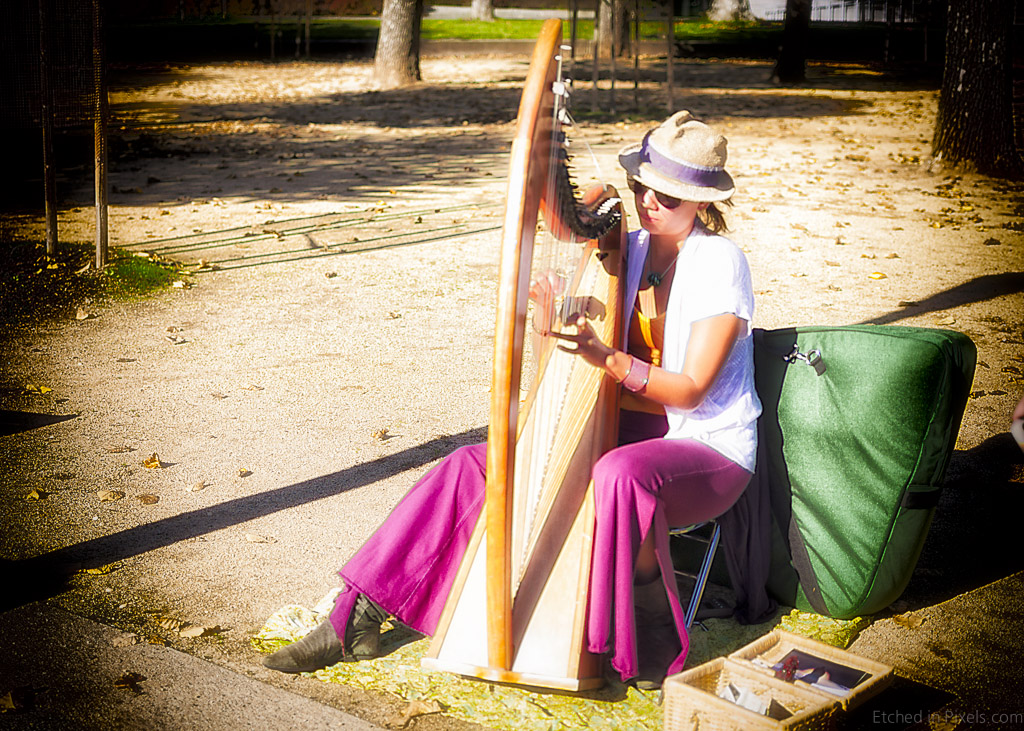 Harp Player in the Park