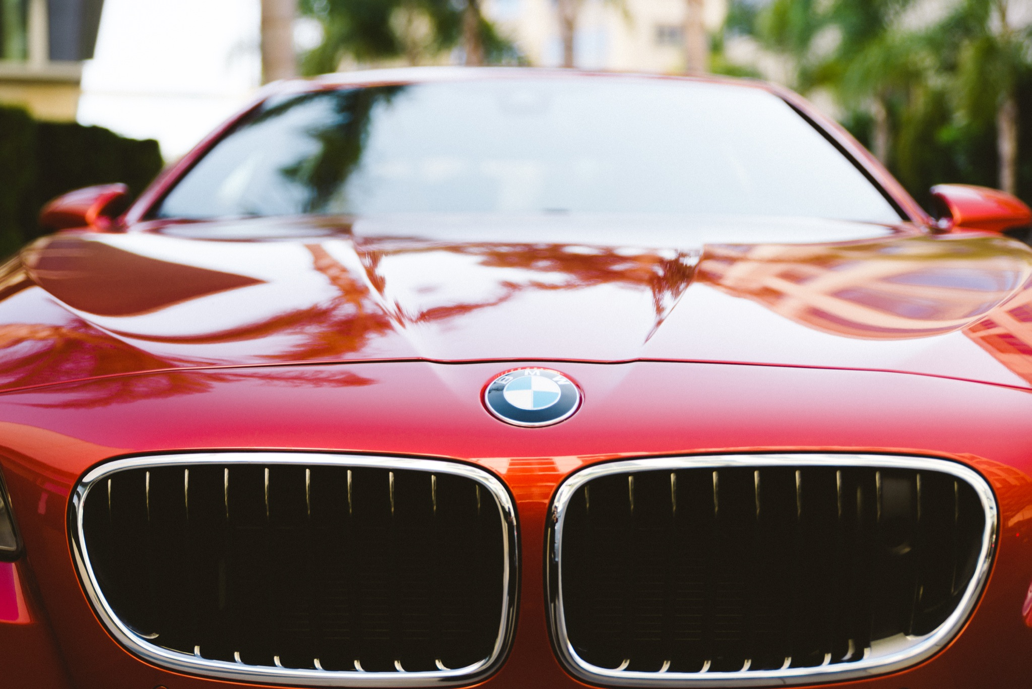 Red BMW car hood and grille