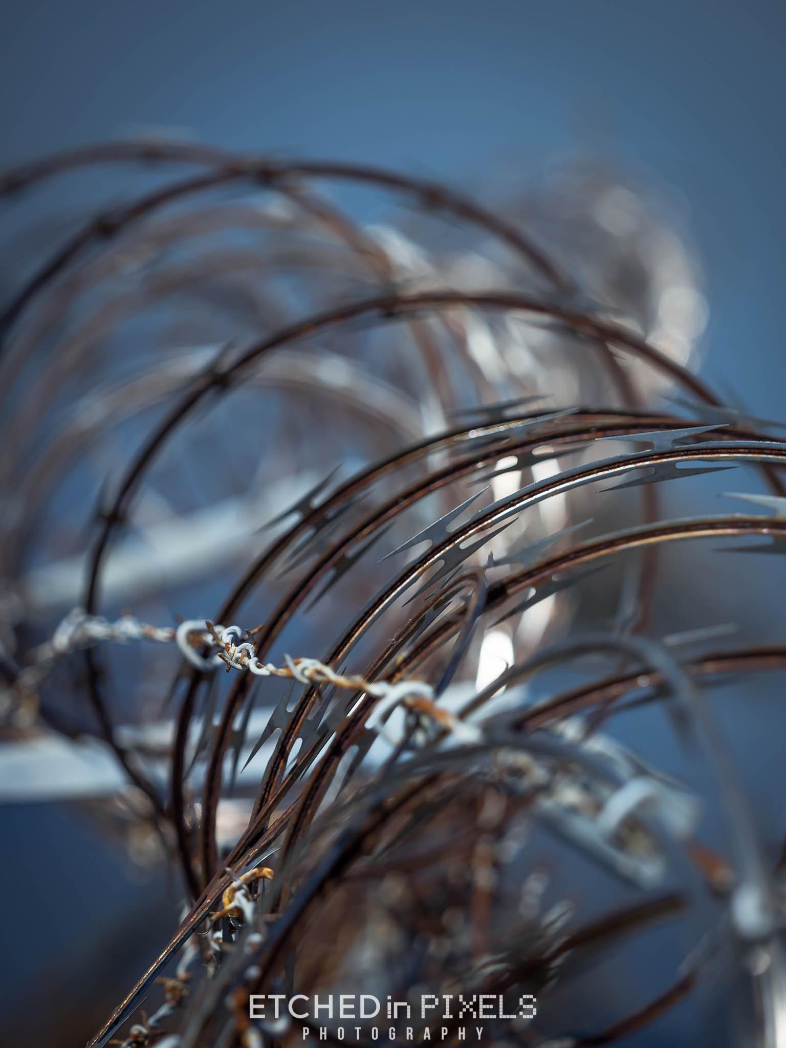 Barb Wire Bokeh