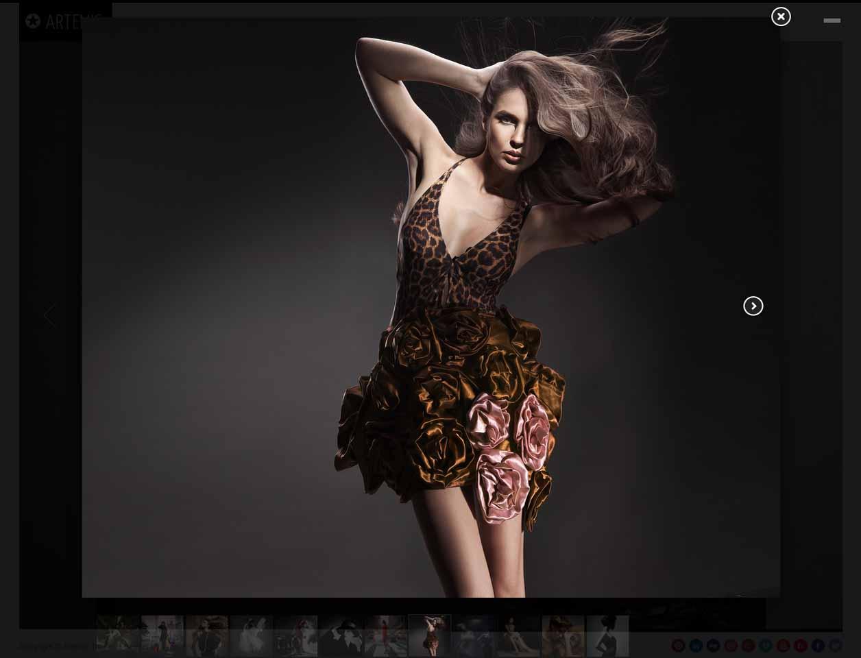 Artemis Portfolio1.jpg