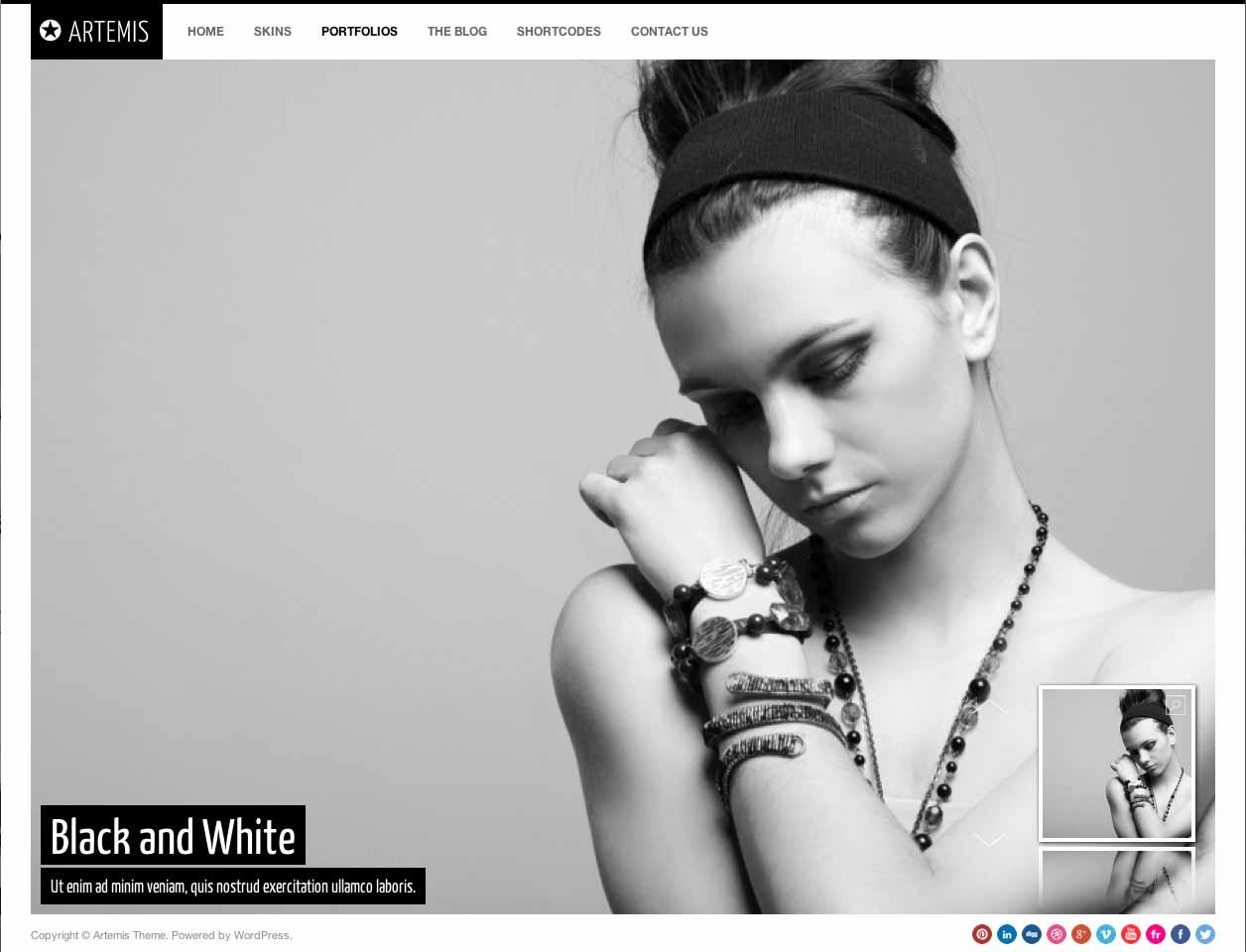 Artemis Portfolio2.jpg