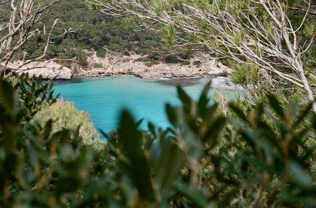 #Menorca #Olympus35sp #kodakcolorplus200 #camidecavalls #filmphotography