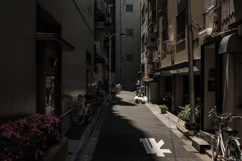 tokyo-10.jpg