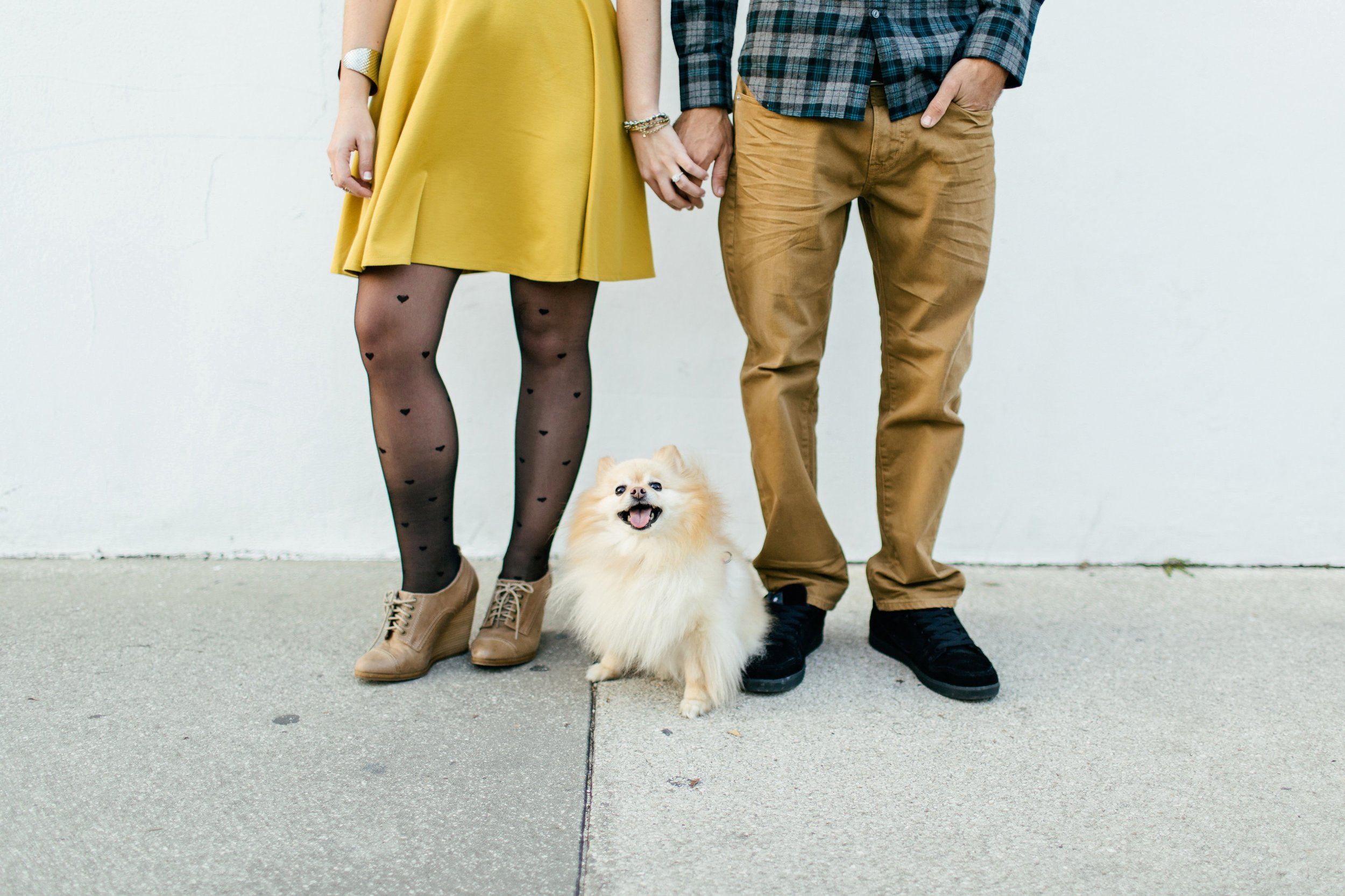dog engagement shoot
