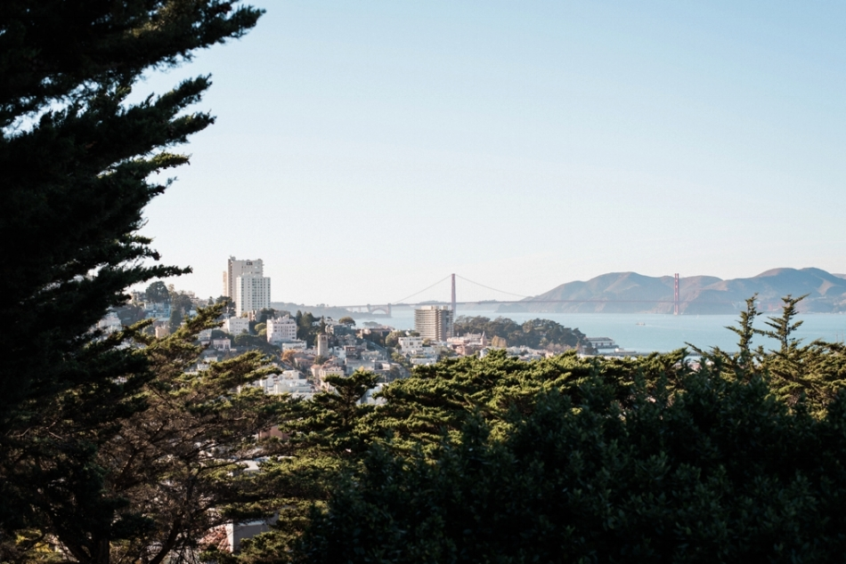 White_Quill_Creative_San_Francisco_Travel_Photography_0002.jpg
