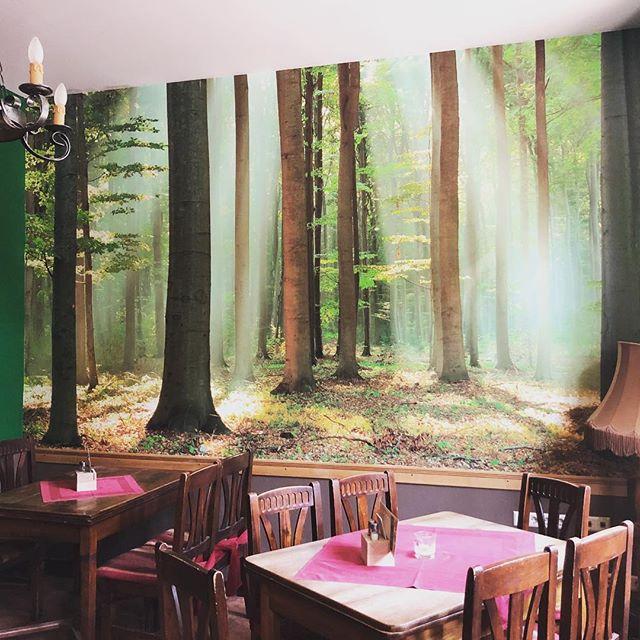 Restaurant Waldfrieden mit neuem Wald. Da musste mal der Profi ran.  #leipzig #leipziglove #handwerk #wallpaper #interiordesign #interior #design #wallart #wallcovering #wallpaper