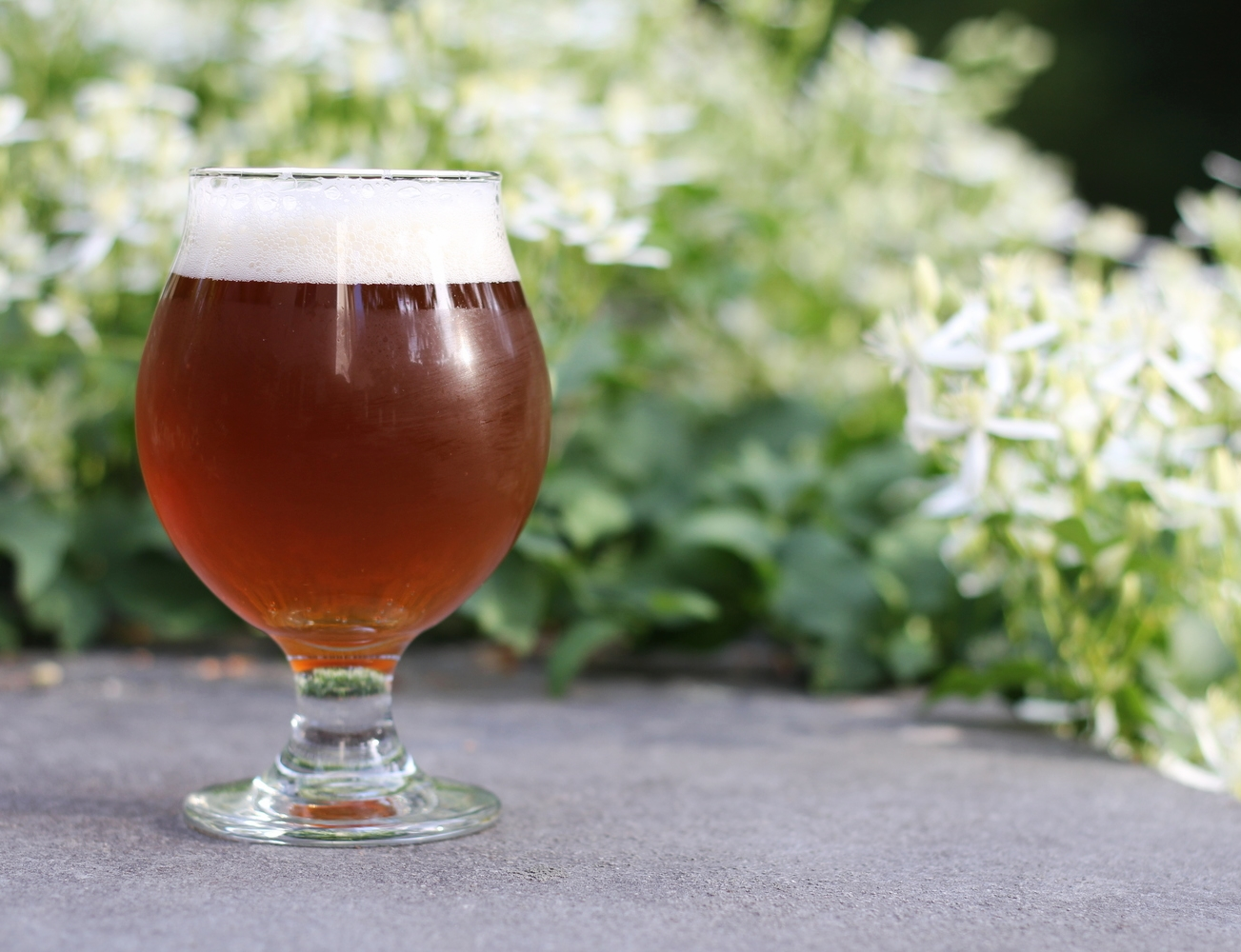 {Estabrook Brewing Co.'s latest brew: India Pale Ale}