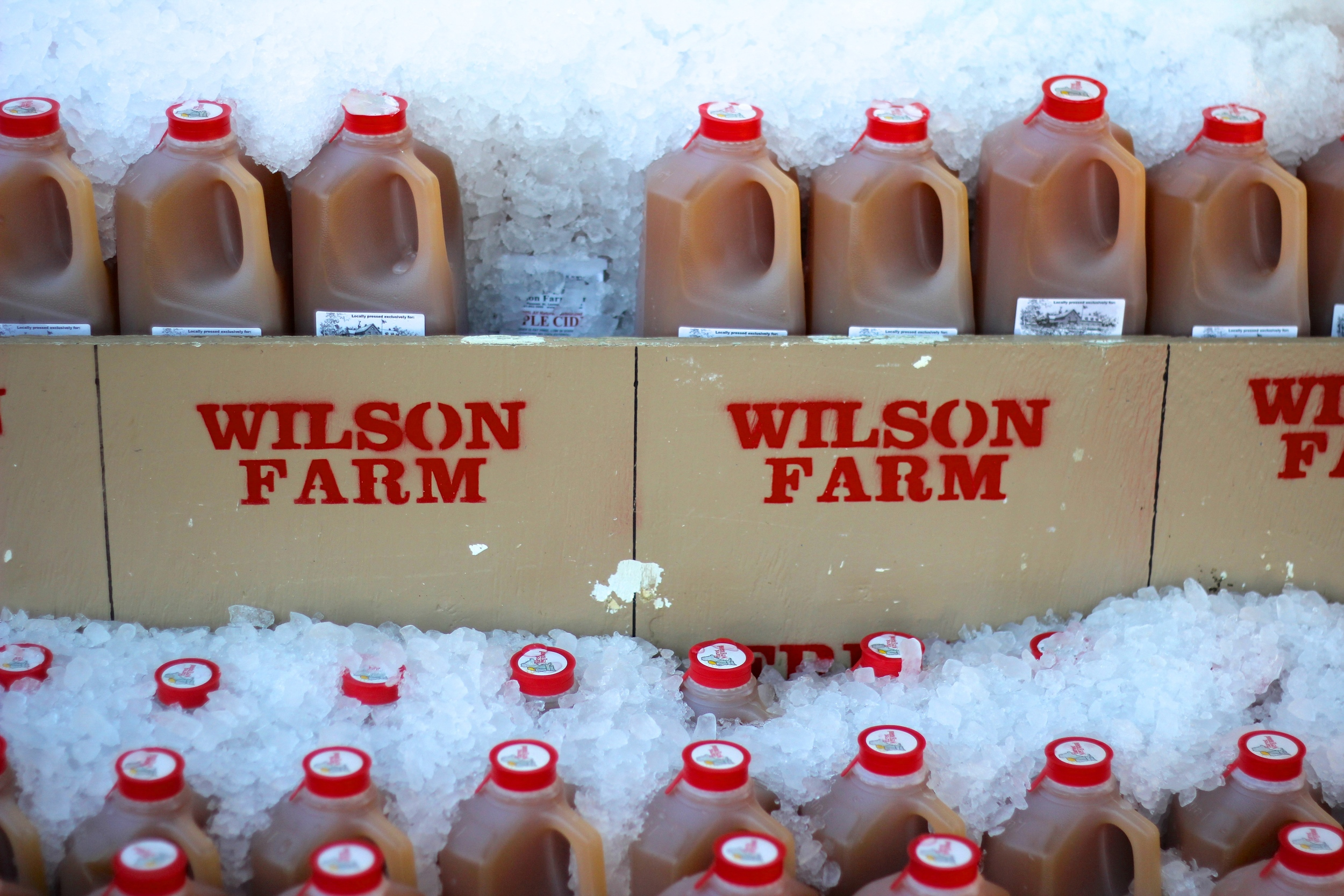{Stocking up on fresh apple cider at Wilson Farms}