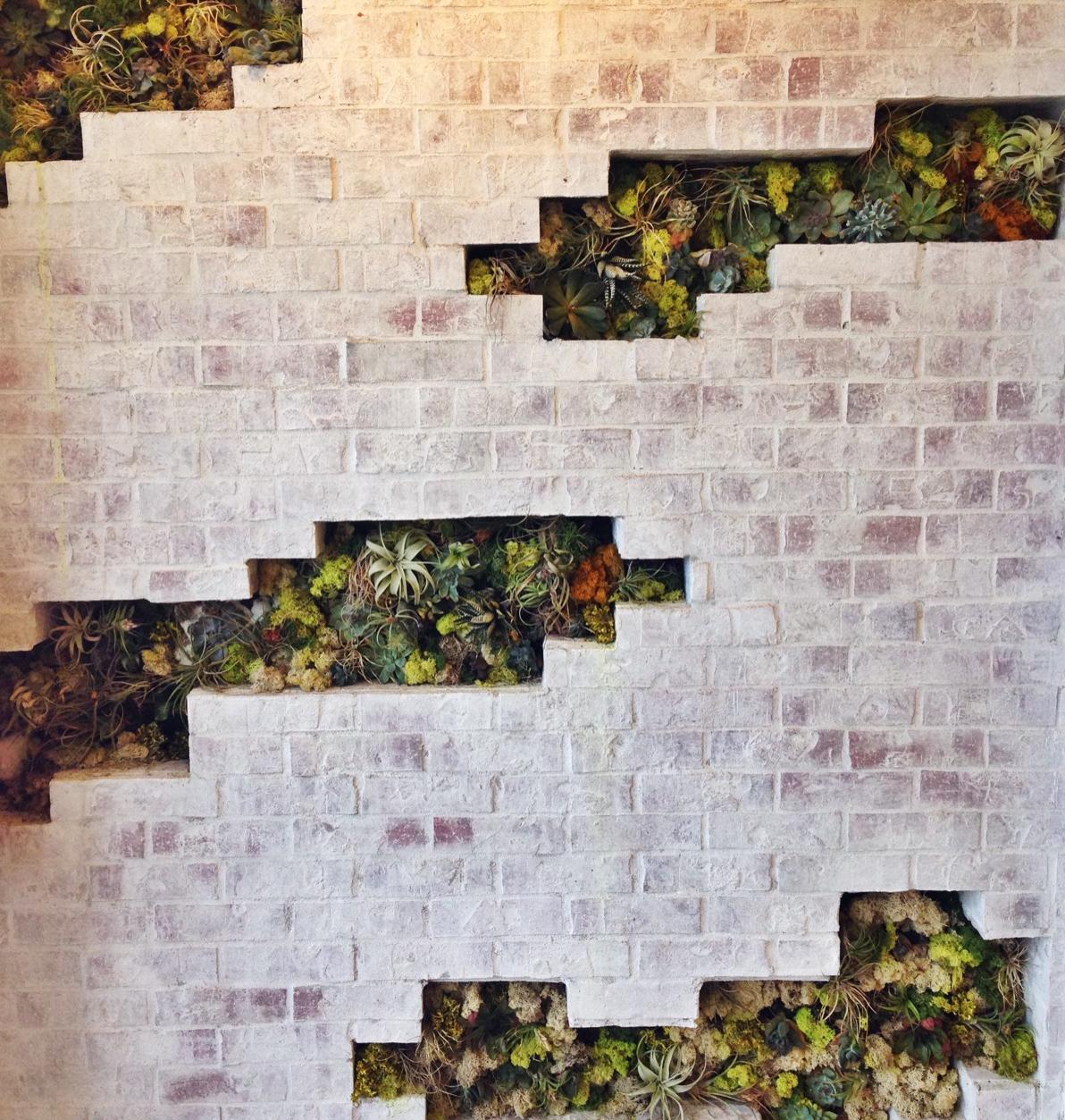 {Cool succulent-filledwall display at Splendid}