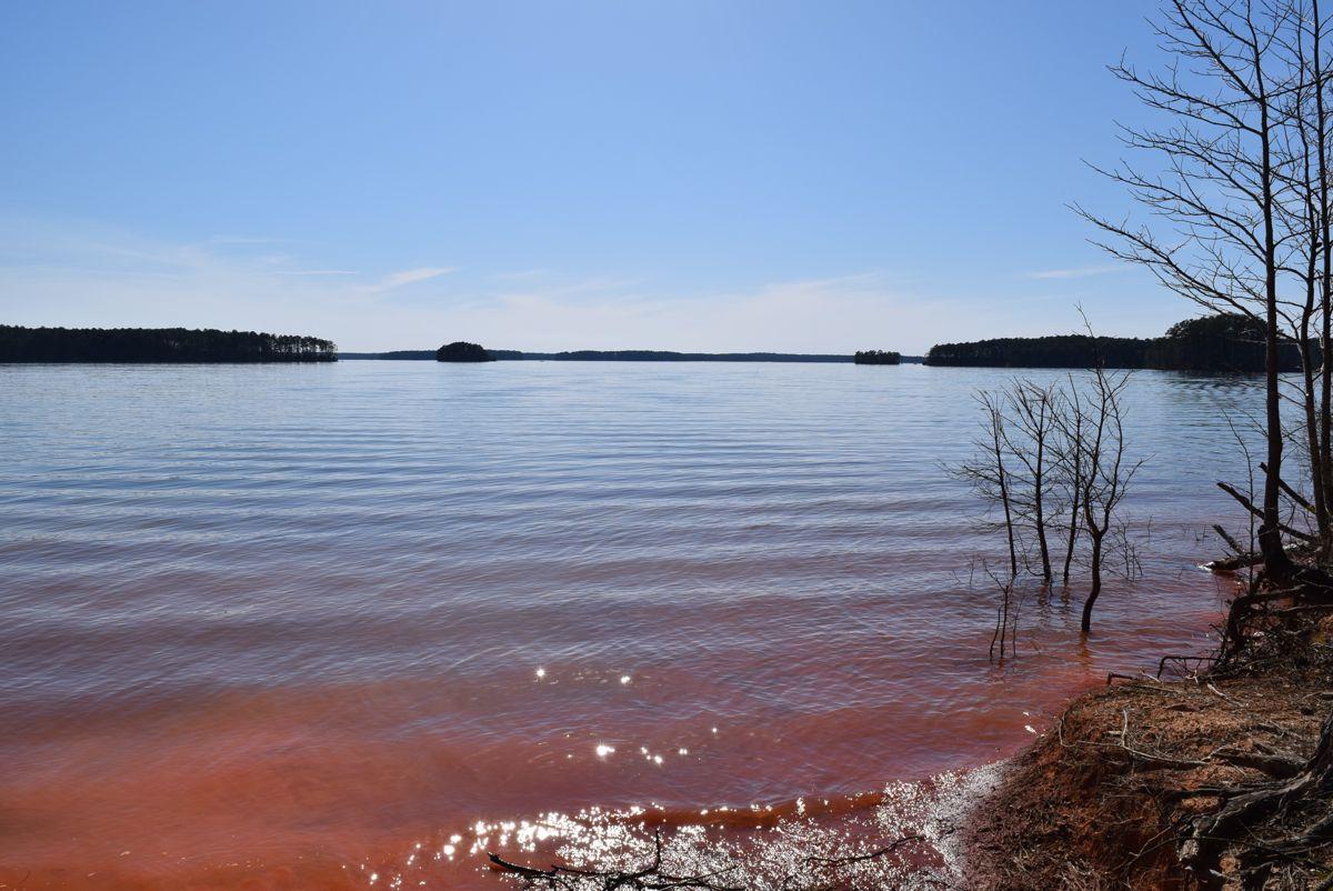 Lake Strom Thurmond, South Carolina/Georgia.