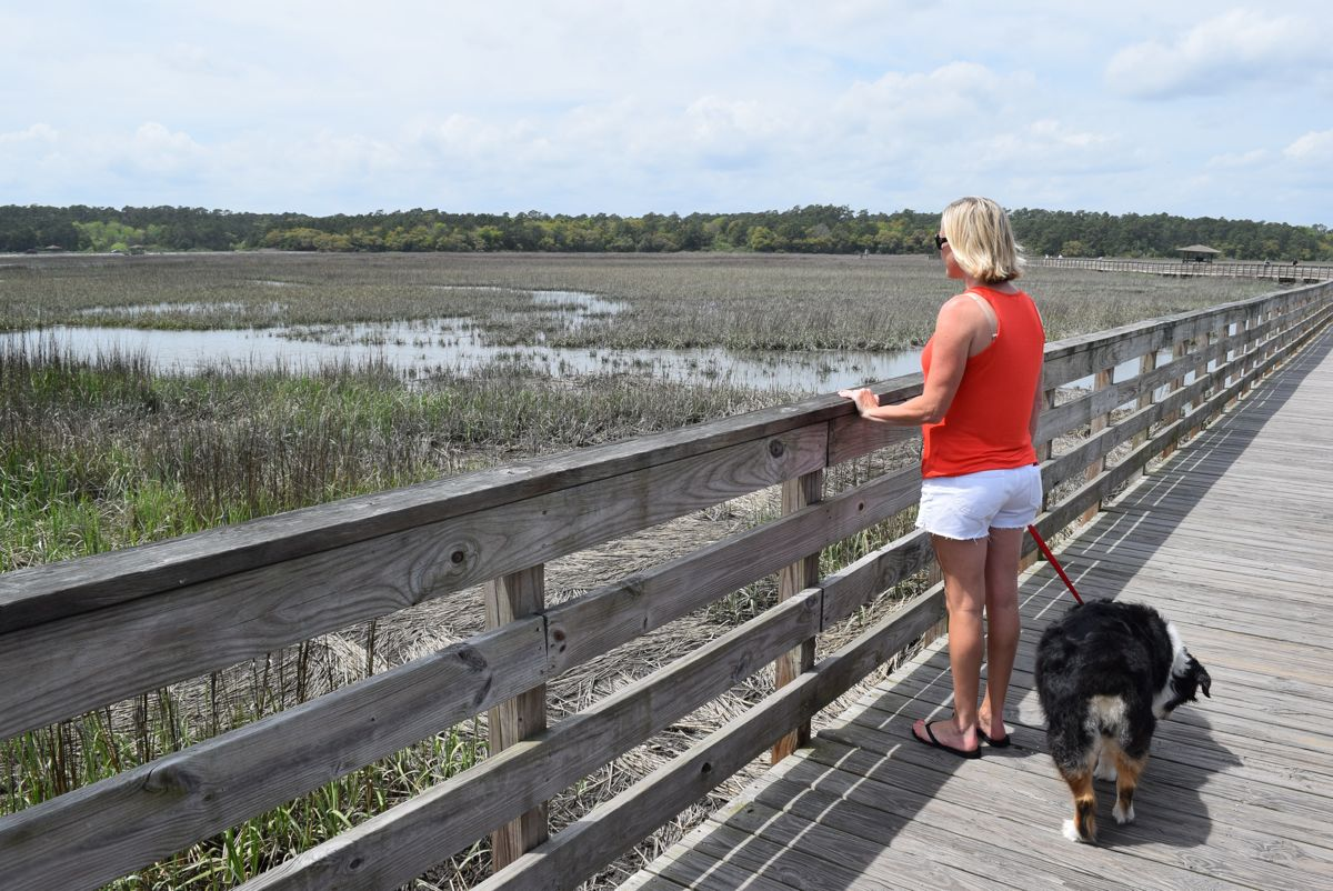Looking for gators, on the other side of the park. This is a manmade salt marsh. Hello mosquitos!