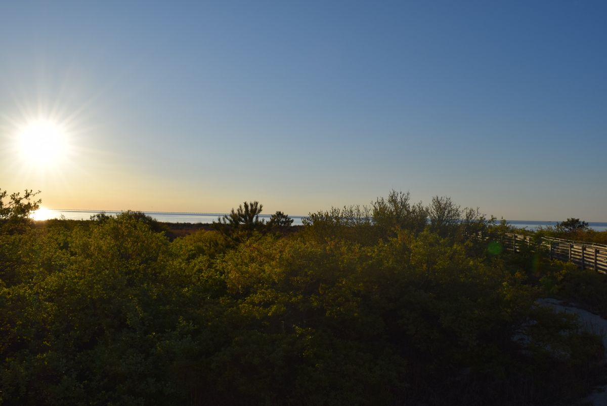 The sun rising over Chesapeake Bay, out our back window.