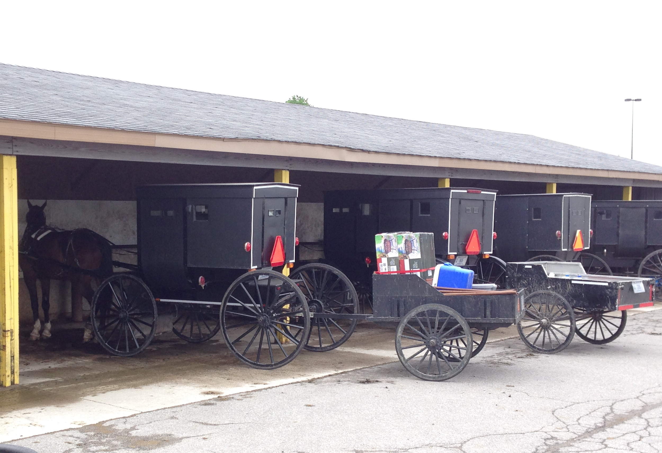 Horse,buggy and trailer parking. You think they have Coors Light in that ice chest?
