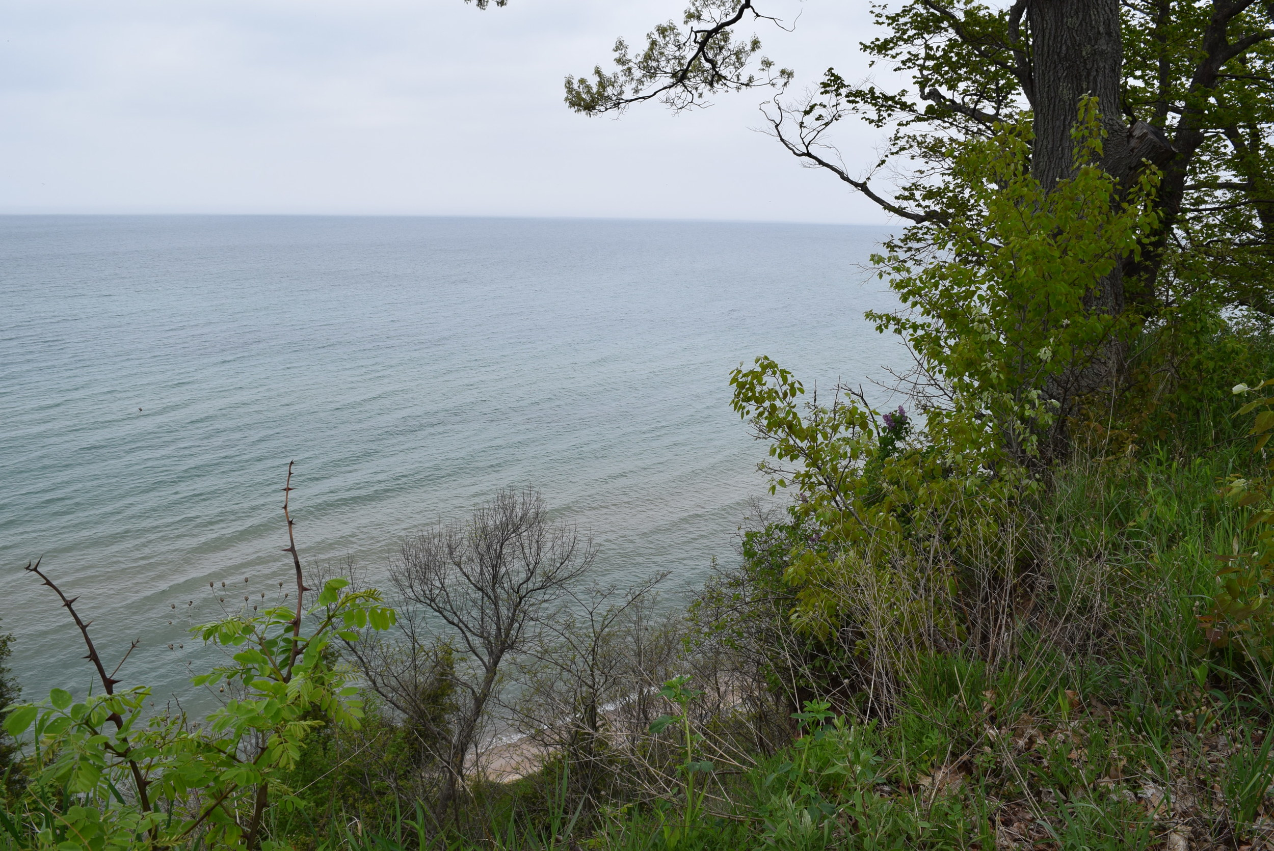 The lake from the bluff, directly behind our site.