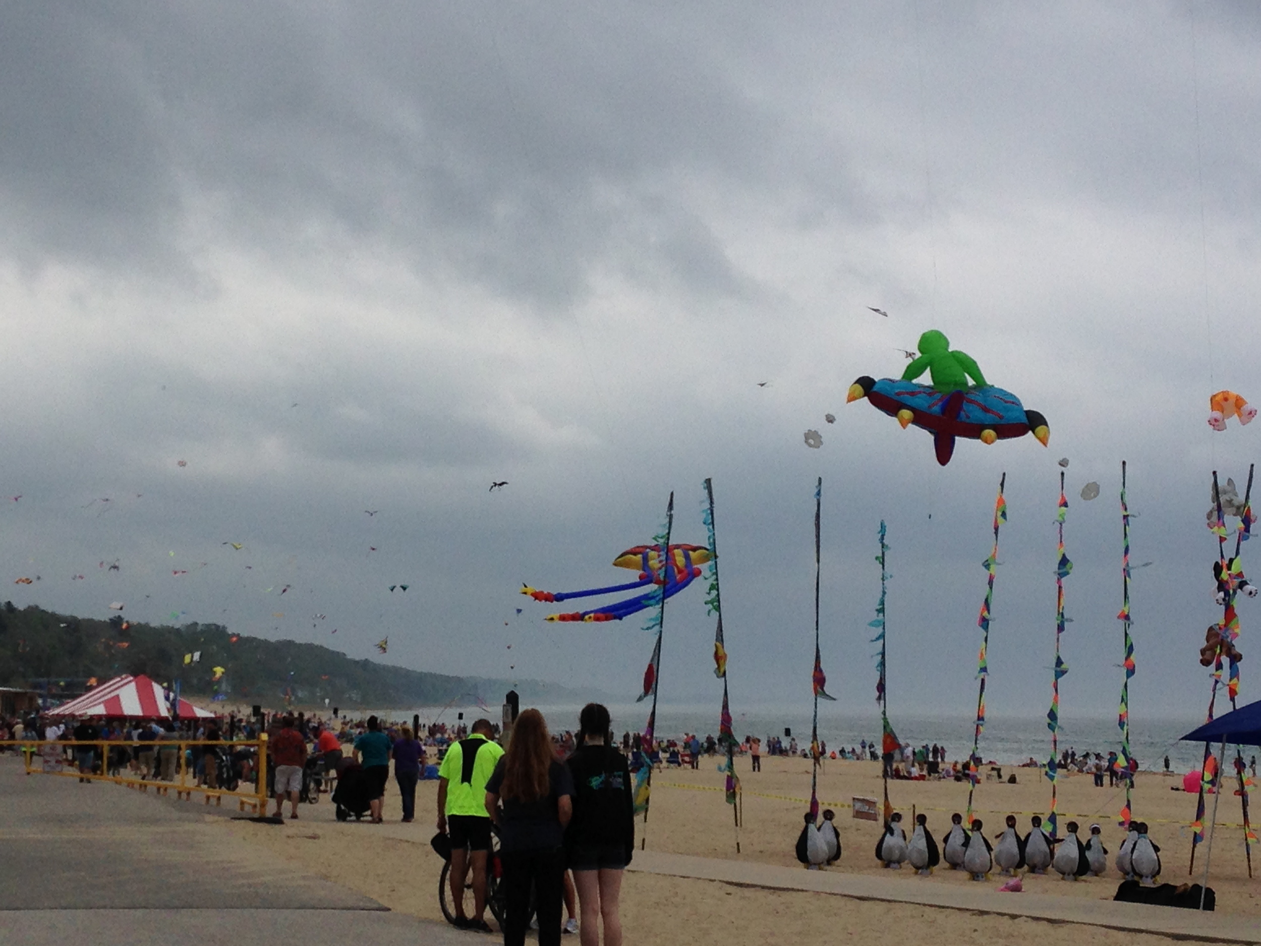 I love the alien/UFO kite.