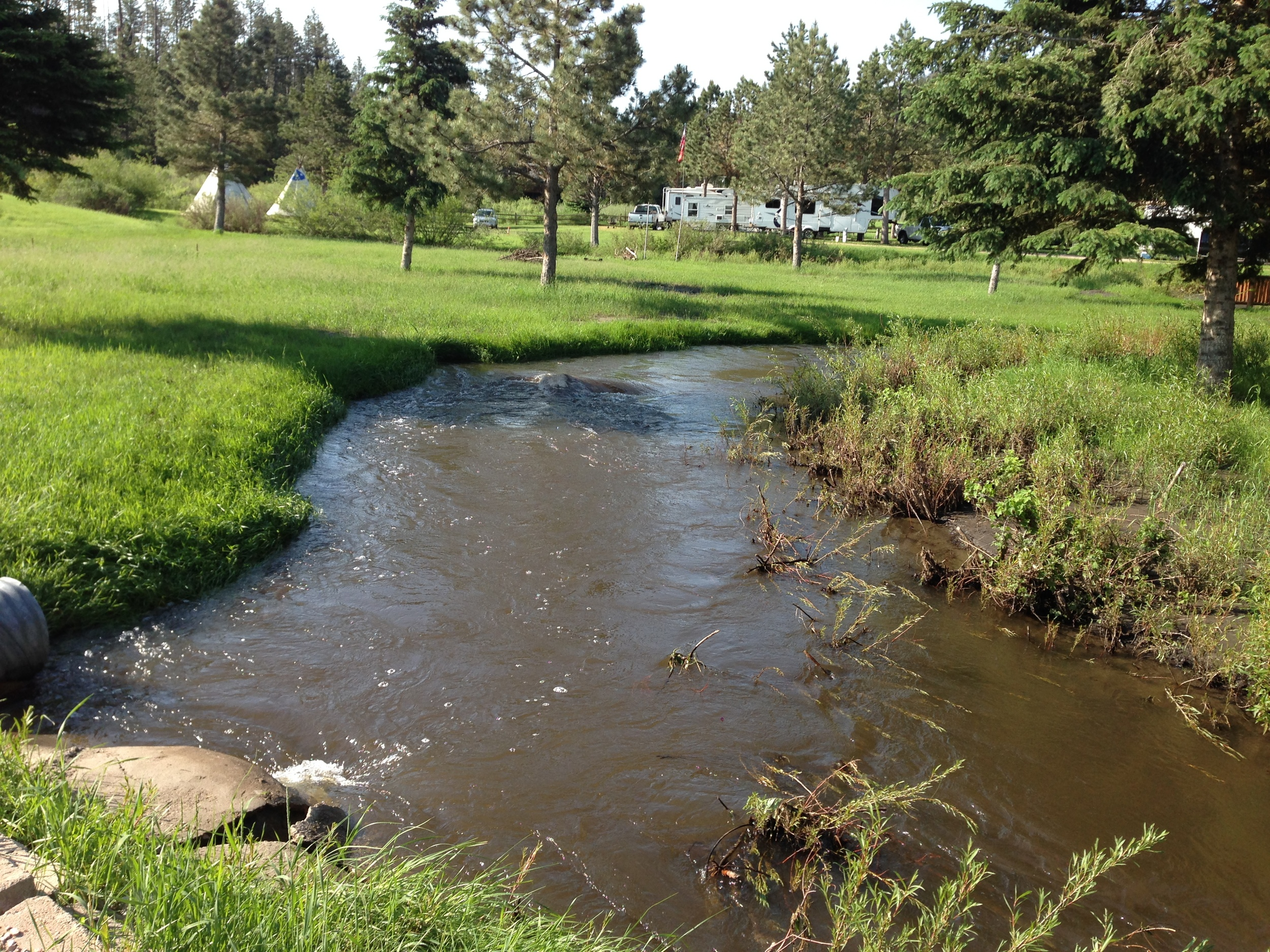 Spring Creek, running through Crooked Creek Resort, Hill City, SD.