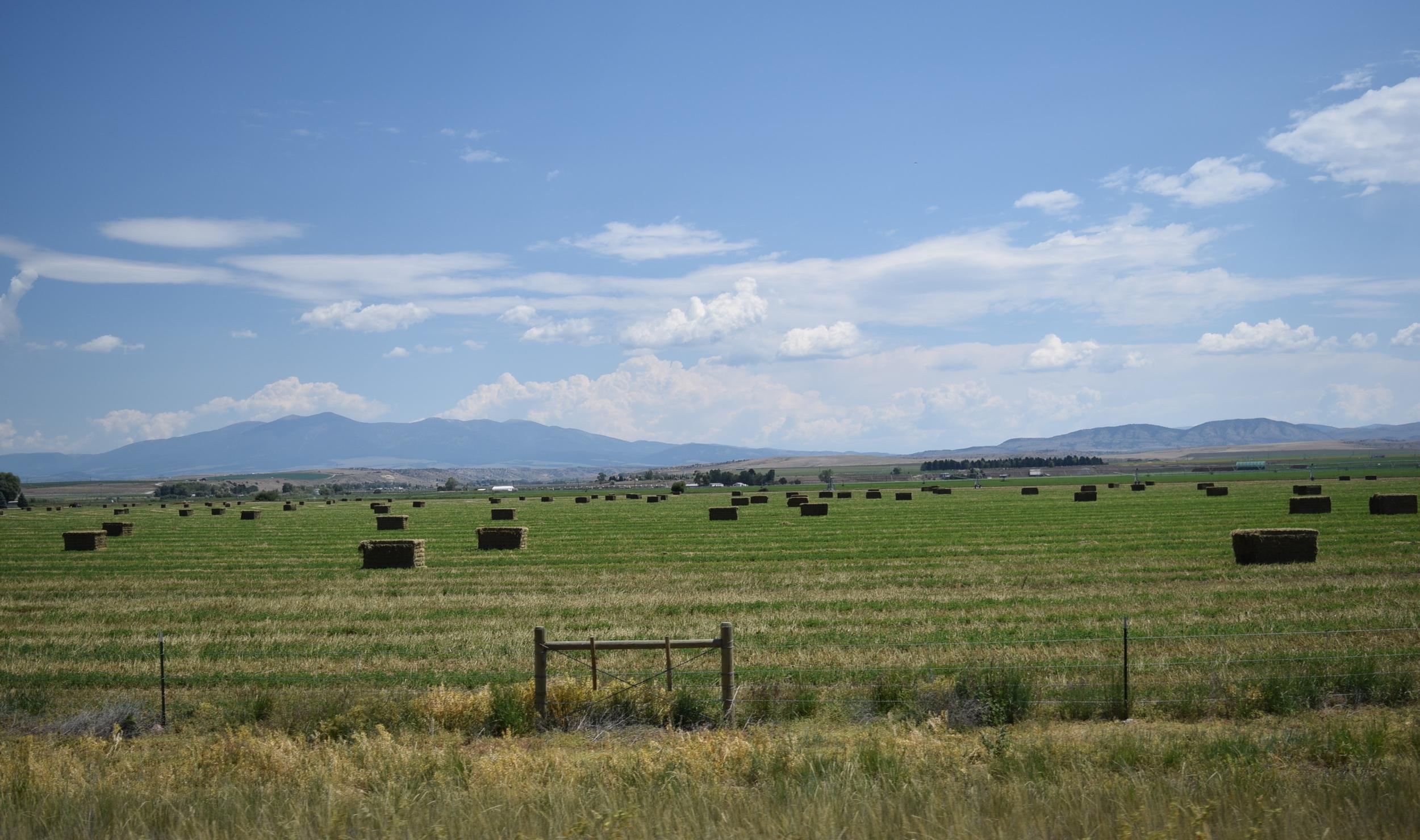 This looks familiar! Montana