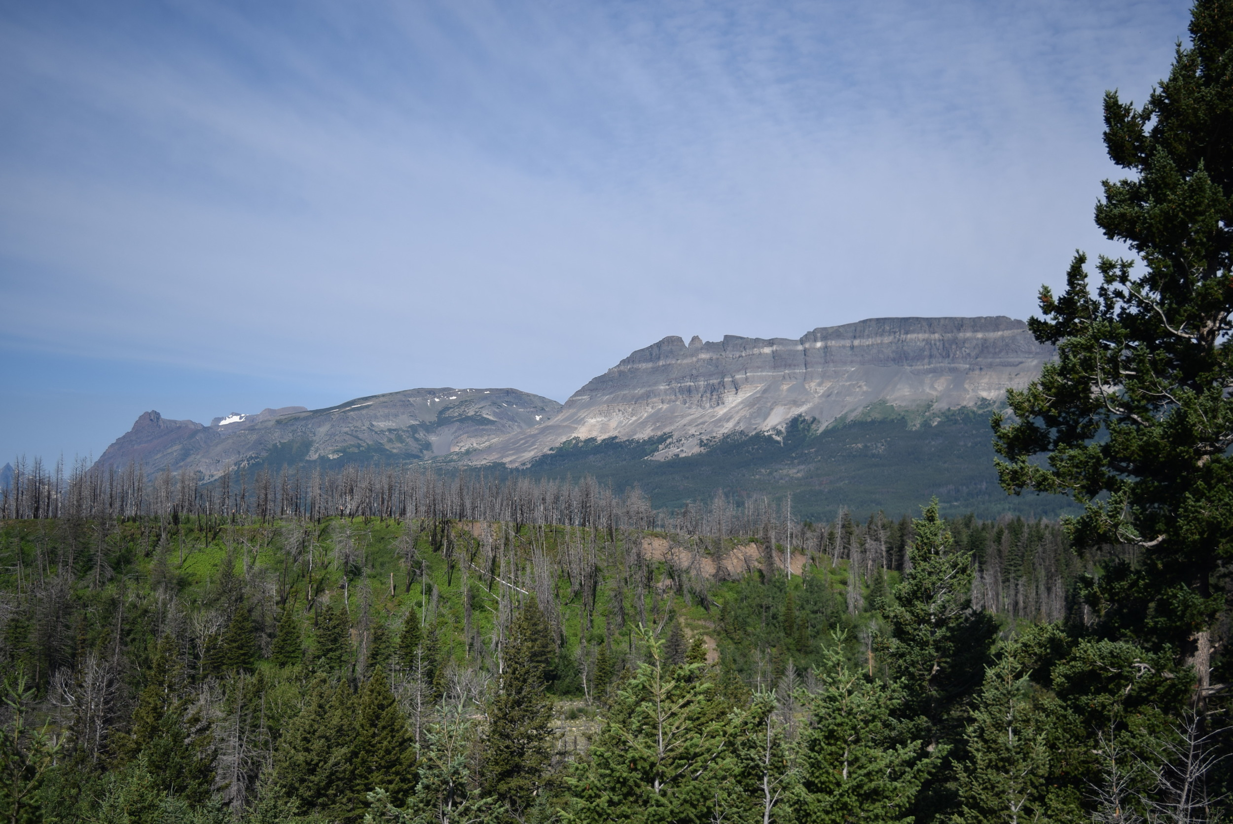 Glacier NP, Montana