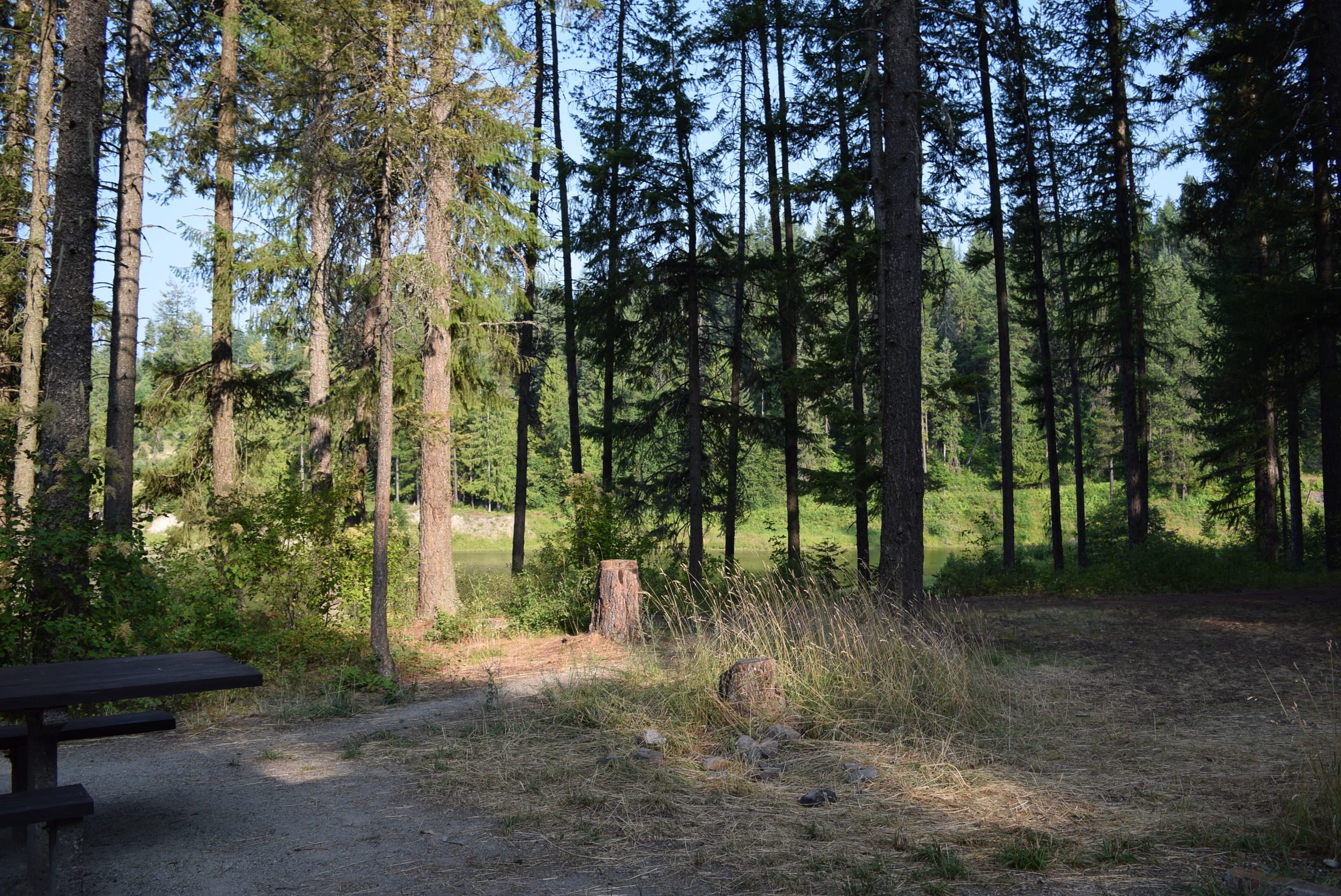 The campsite at Bull River National Park campground. One of my favorites.