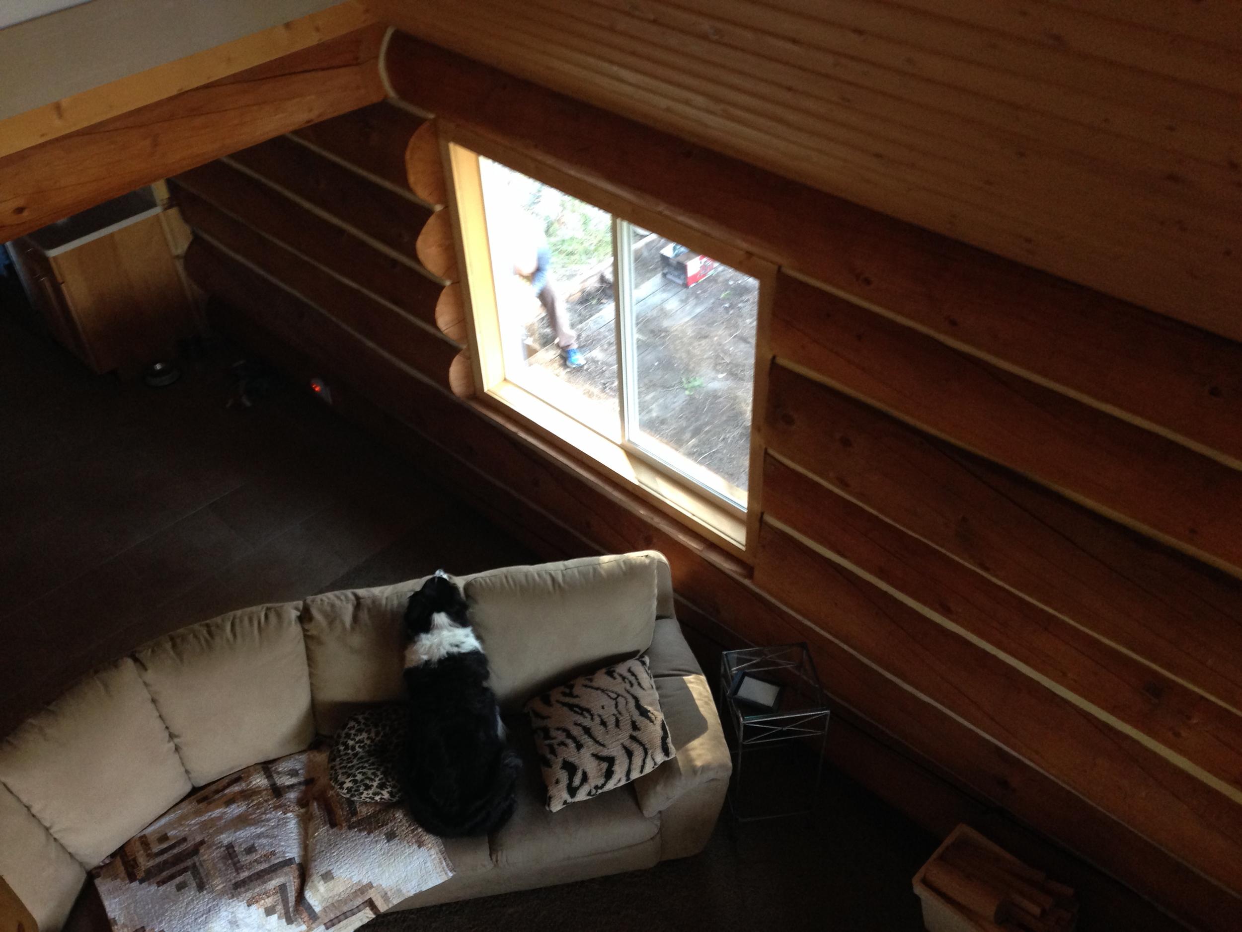 Fiona watching her Daddy work through the window.