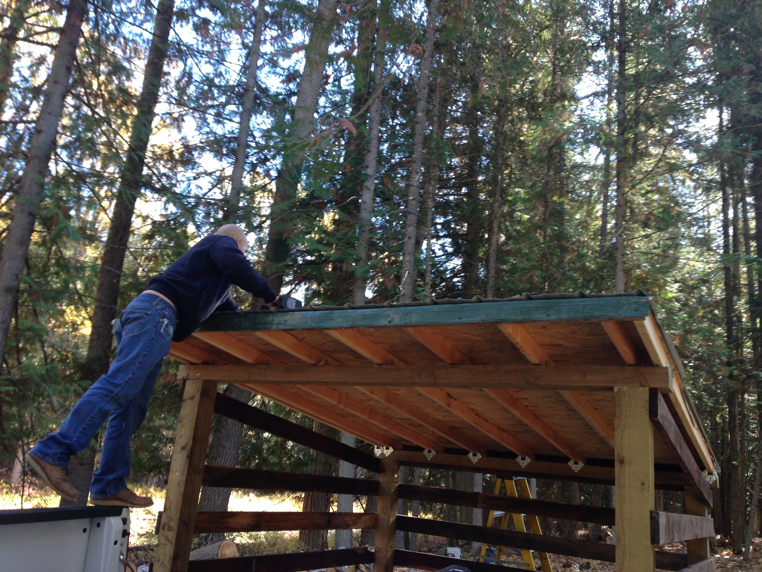 Working on the roof of the woodshed.