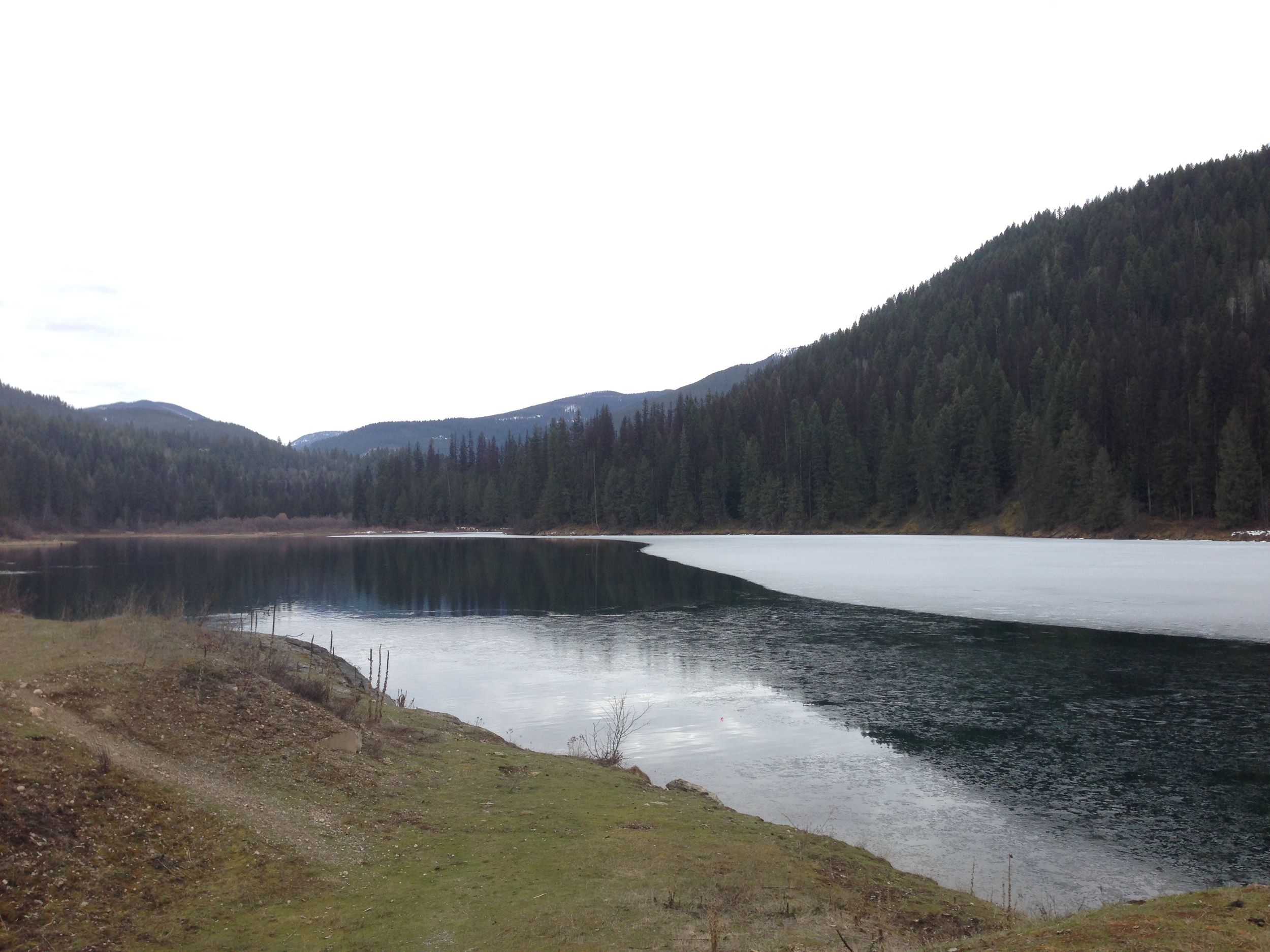 A partially frozen Mill Pond.