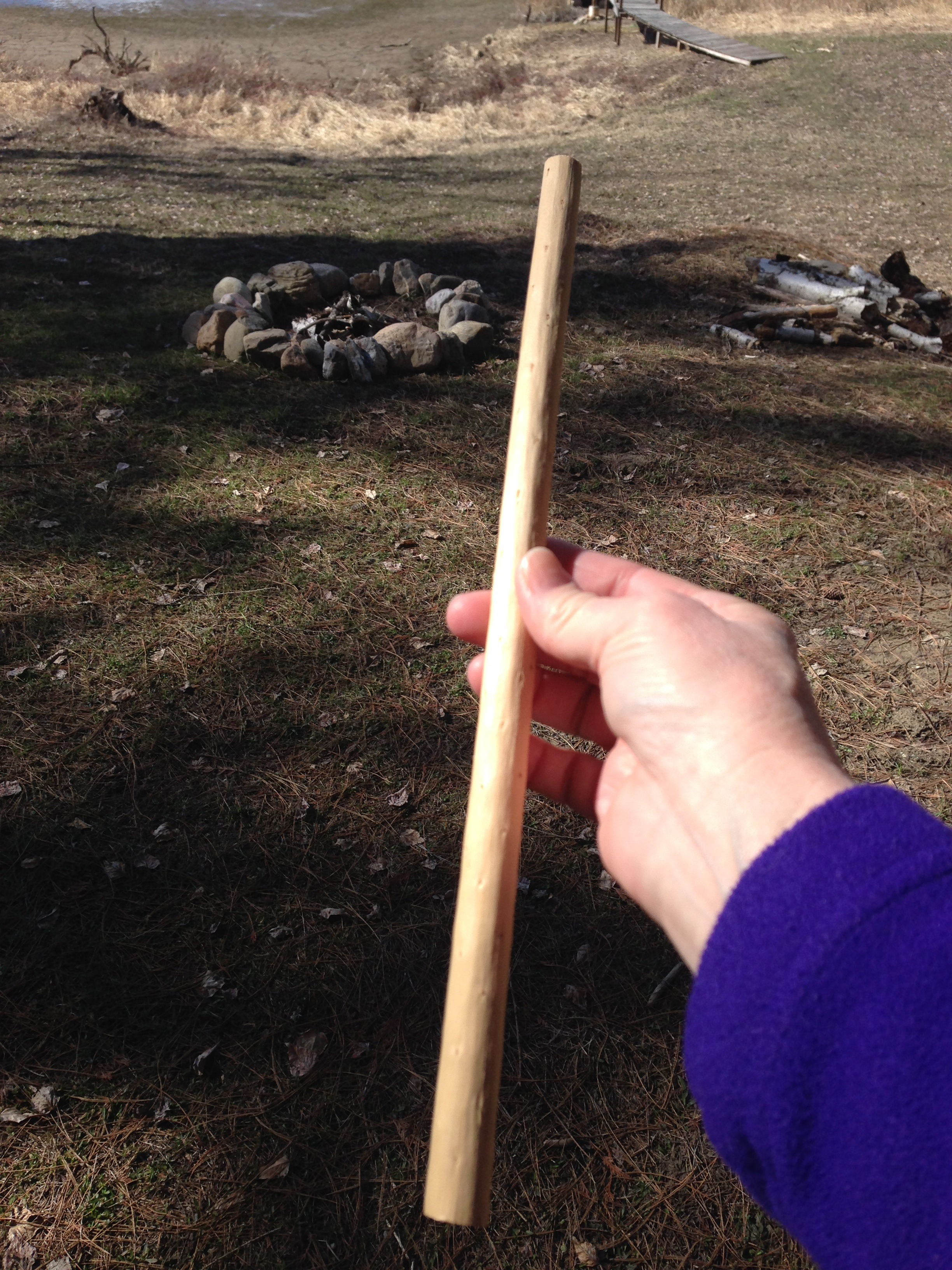 Sometimes Paul splits a log and a perfect dowel shaped center pops out. It's like the tree's inner sapling.