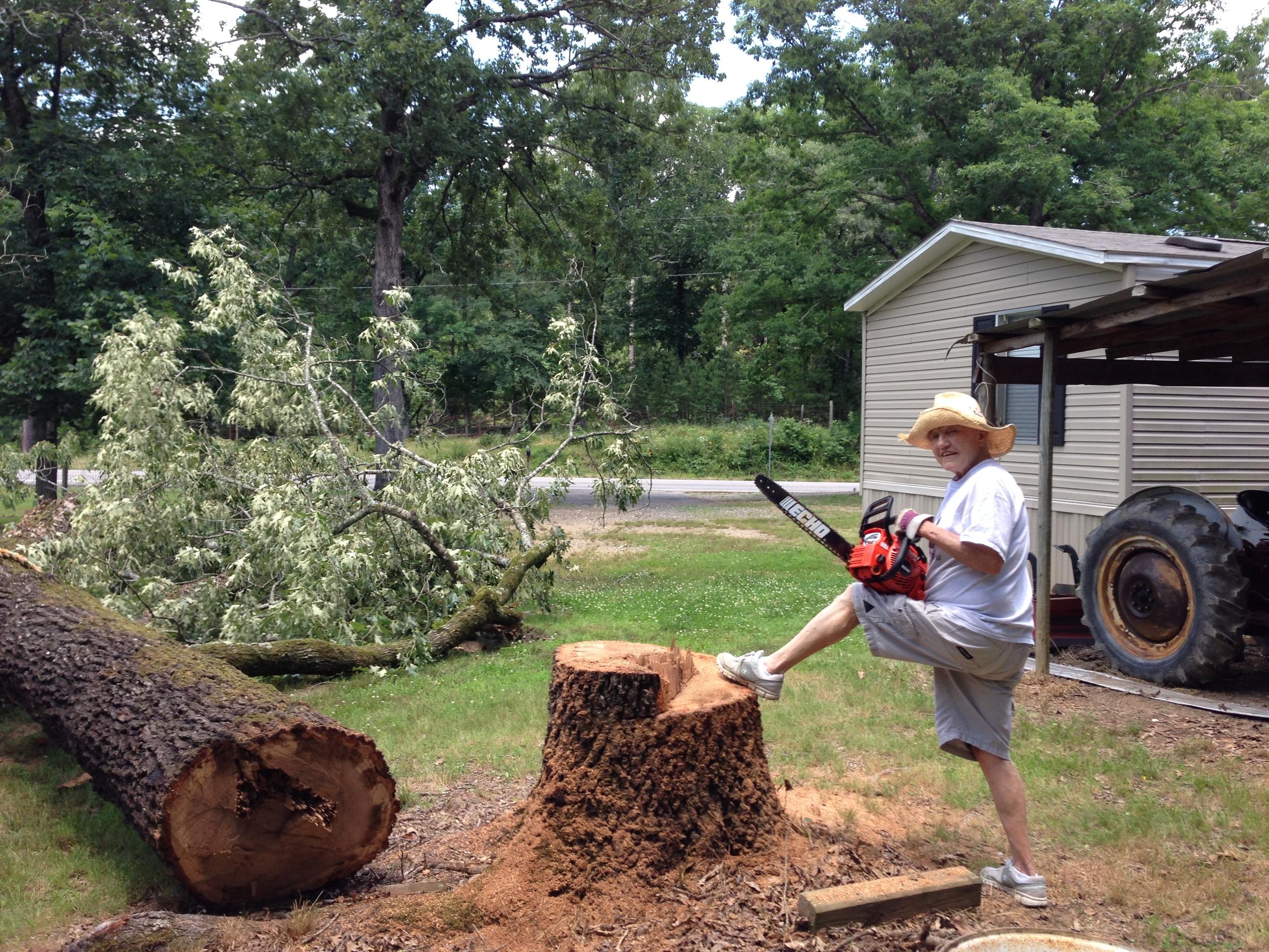 Aunt Linda cut down a tree!
