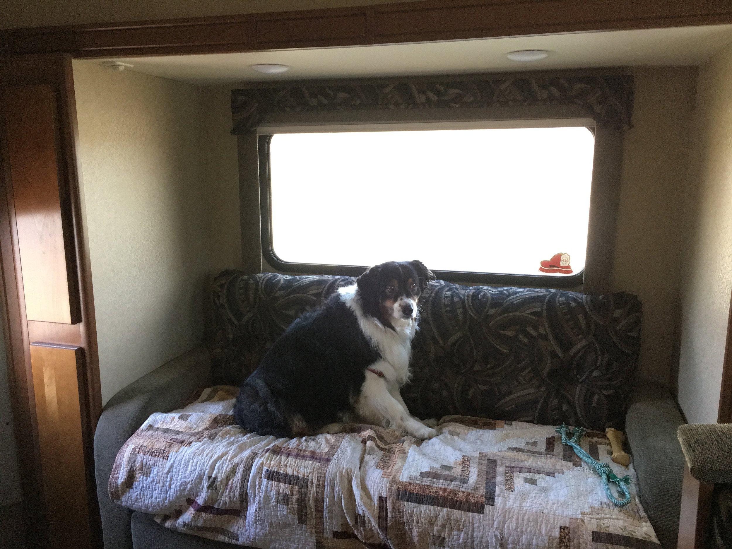 She loves traveling!