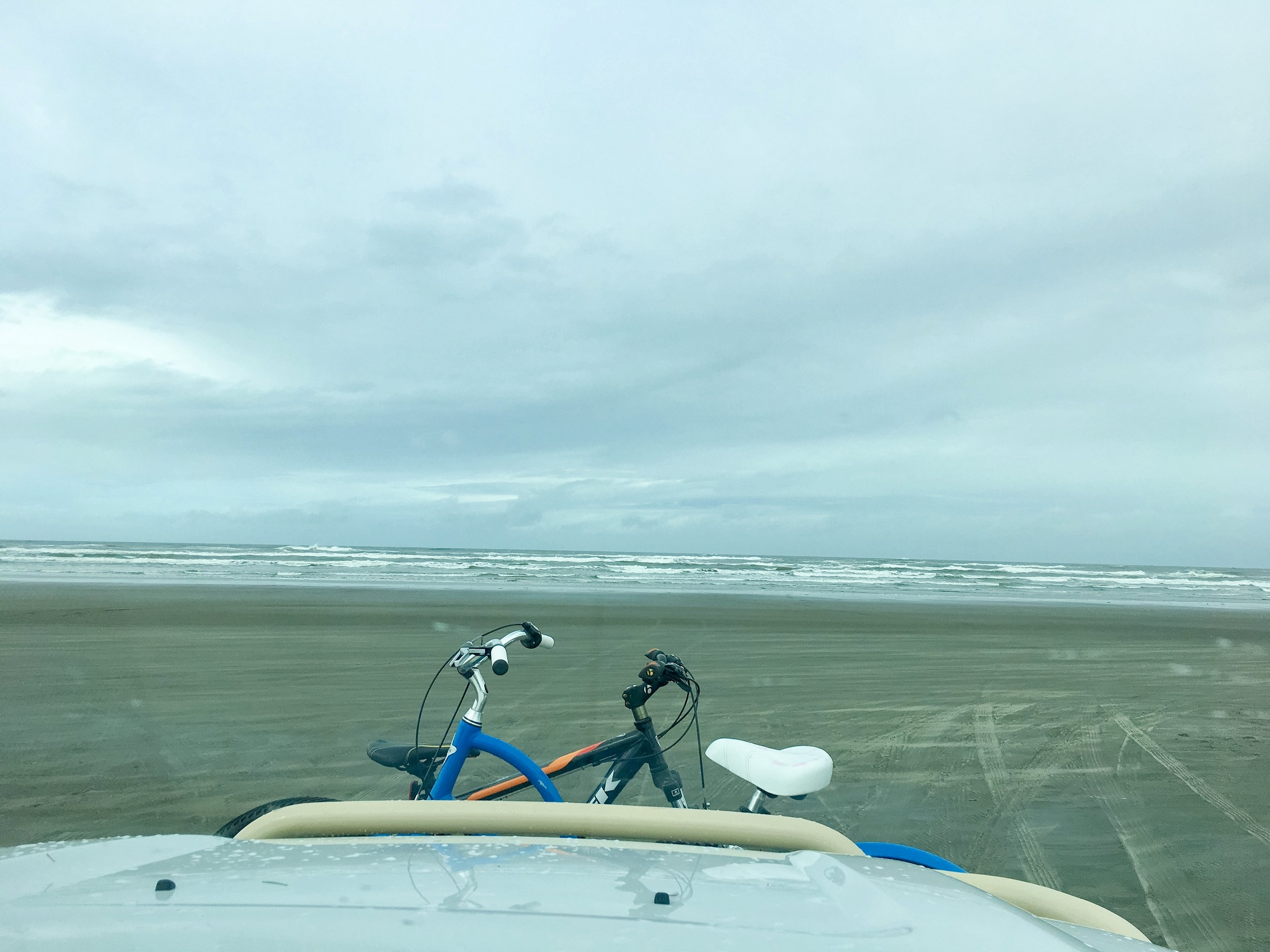 We drove out onto the beach in Long Beach, WA. It is the longest beach in the US at 28 miles.