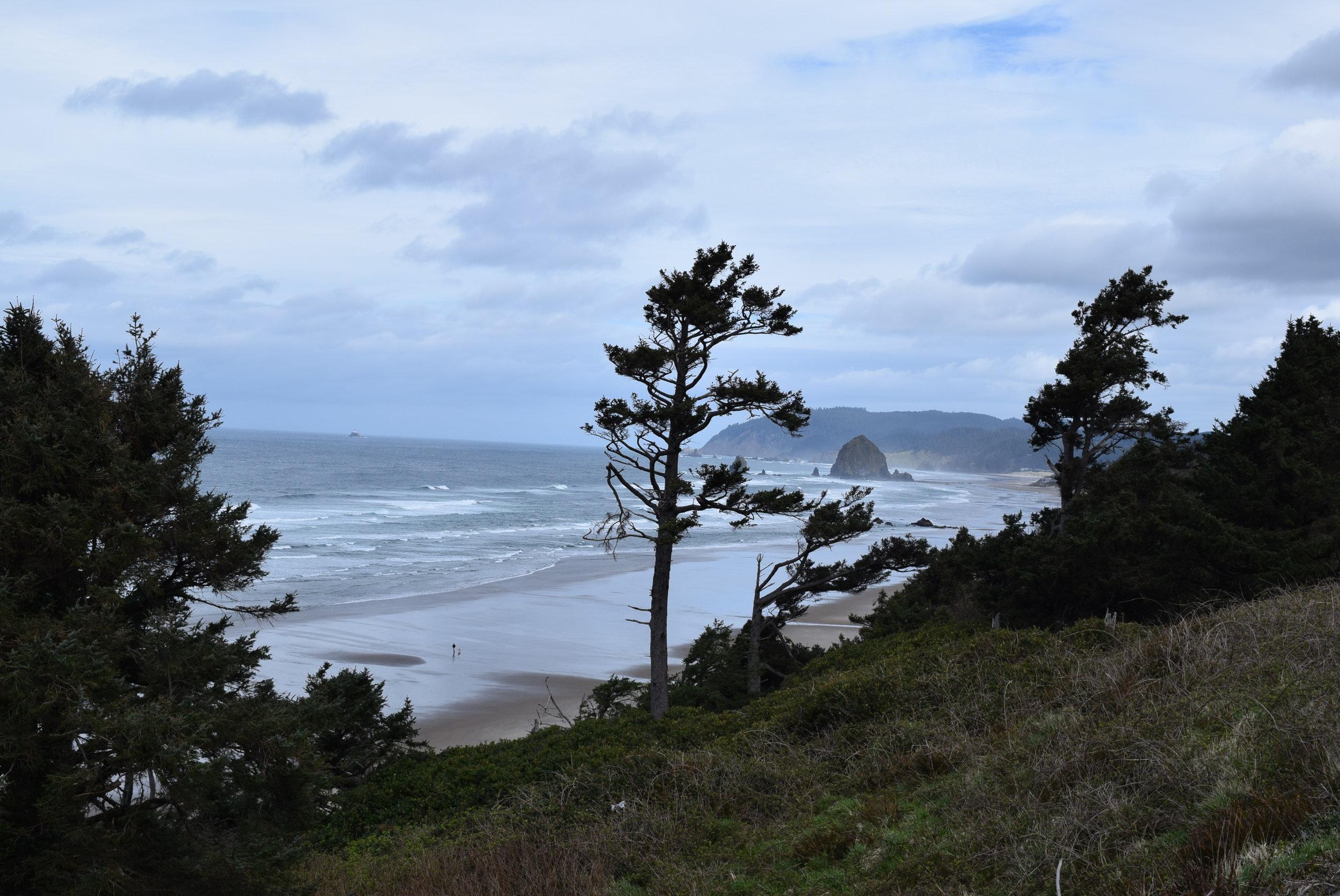 Beautiful views at every turn along the Oregon coast.